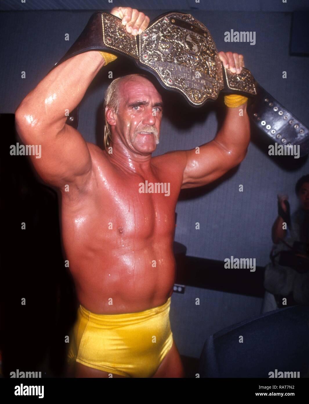 Hogan hulk tape-2327