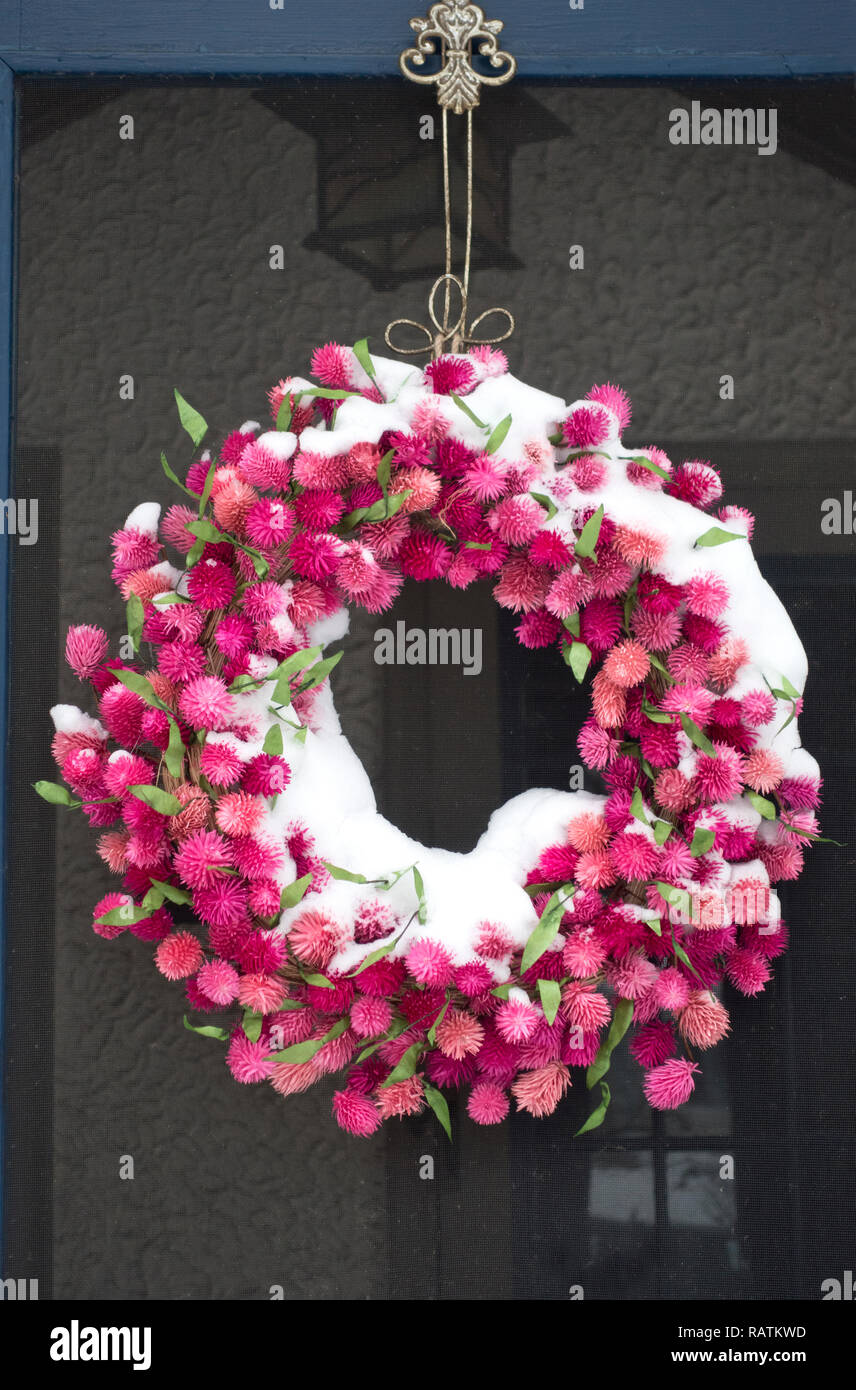 Beautiful outdoor pink dried flower wreath encrusted with snow. St Paul Minnesota MN USA - Stock Image