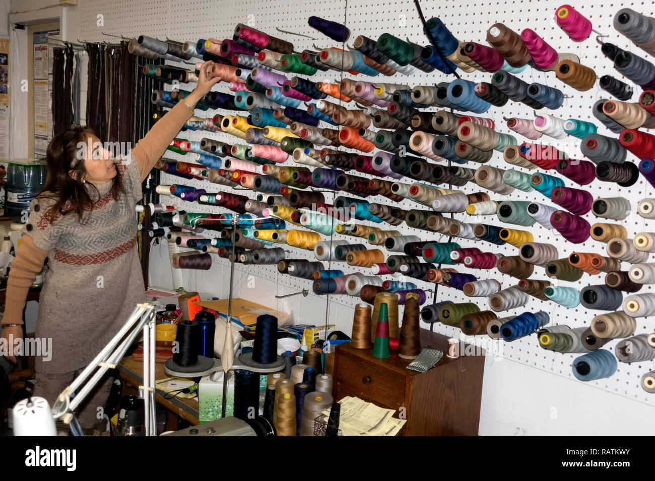 Seamstress showing an assortment of spooled threads used in her work at the Sew What! alterations and tailoring shop. St Paul Minnesota MN USA - Stock Image