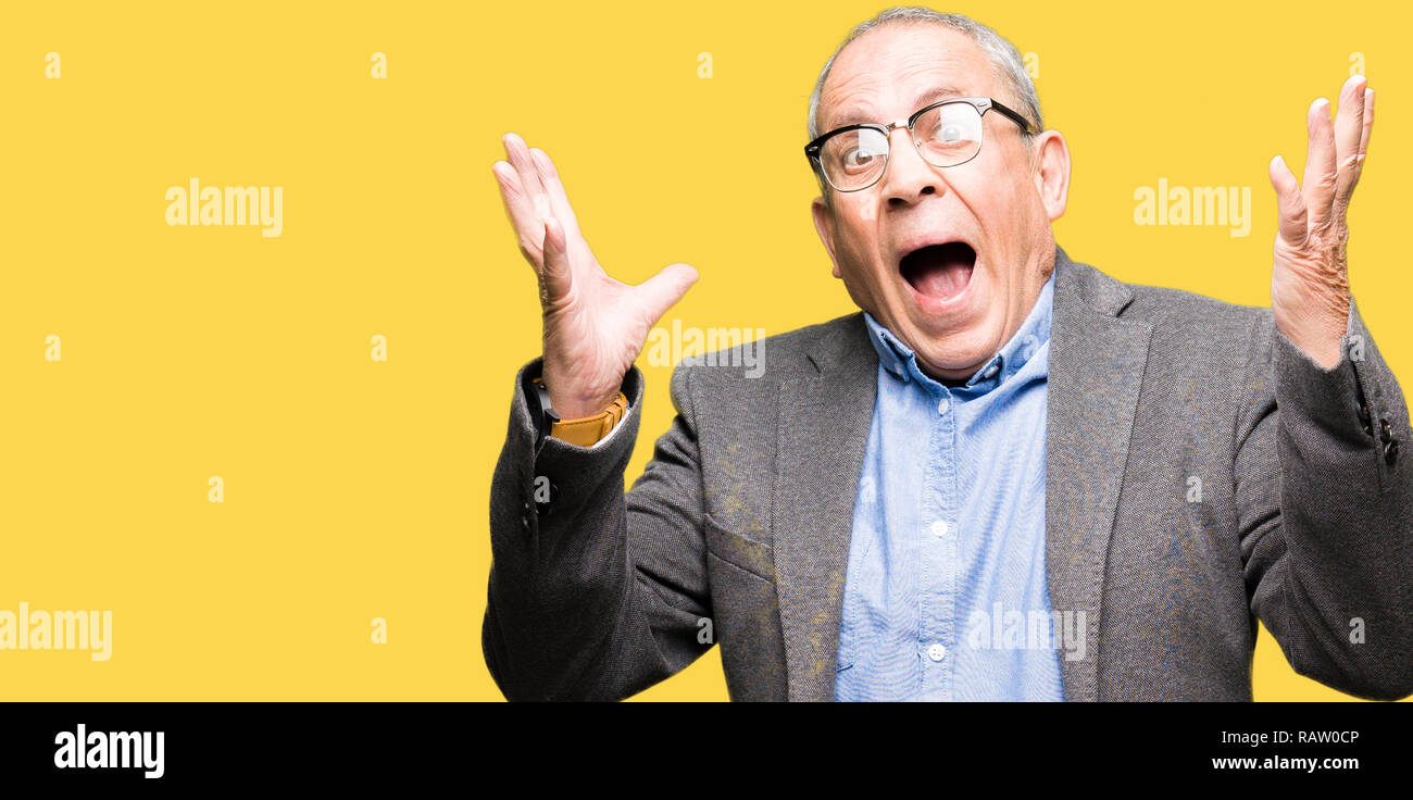 Handsome senior businesss man wearing glasses crazy and mad shouting and yelling with aggressive expression and arms raised. Frustration concept. - Stock Image