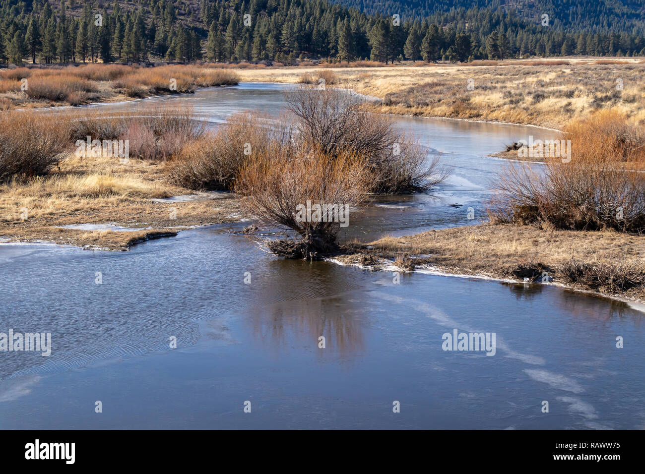 Feather River winding throng a field towards a mountain in Northern California. - Stock Image