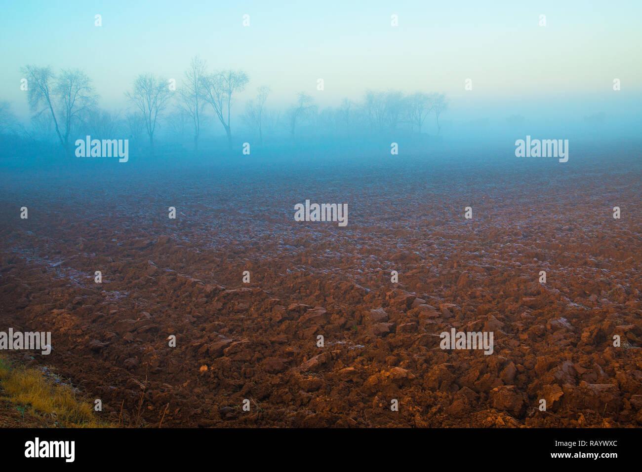 Cultivation field in the mist. Dos Barrios, Toledo province, Castilla La Mancha, Spain. - Stock Image