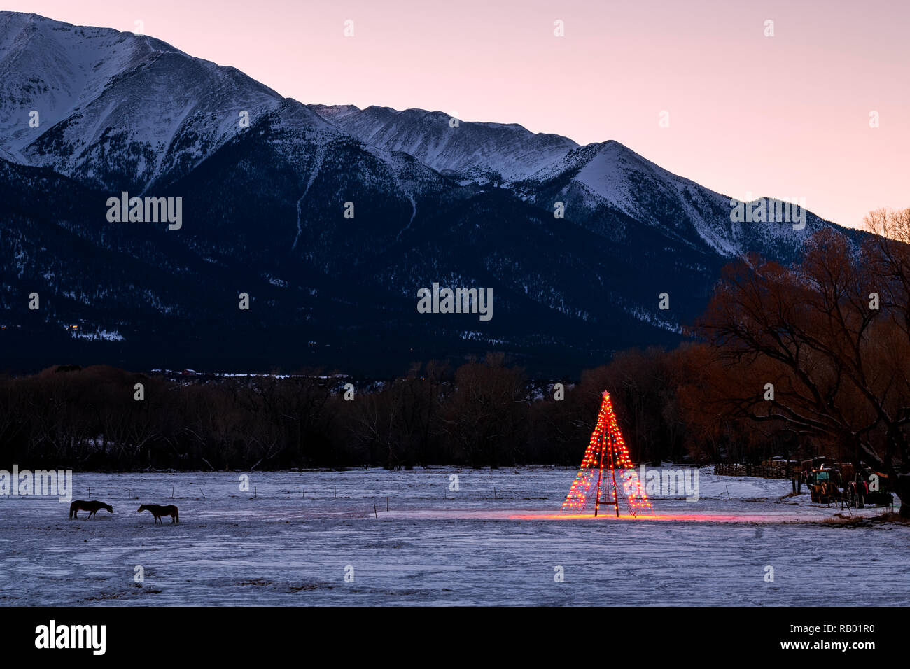 Christmas In Colorado Mountains.Lone Christmas Tree Illuminated In Snowy Ranch Pasture