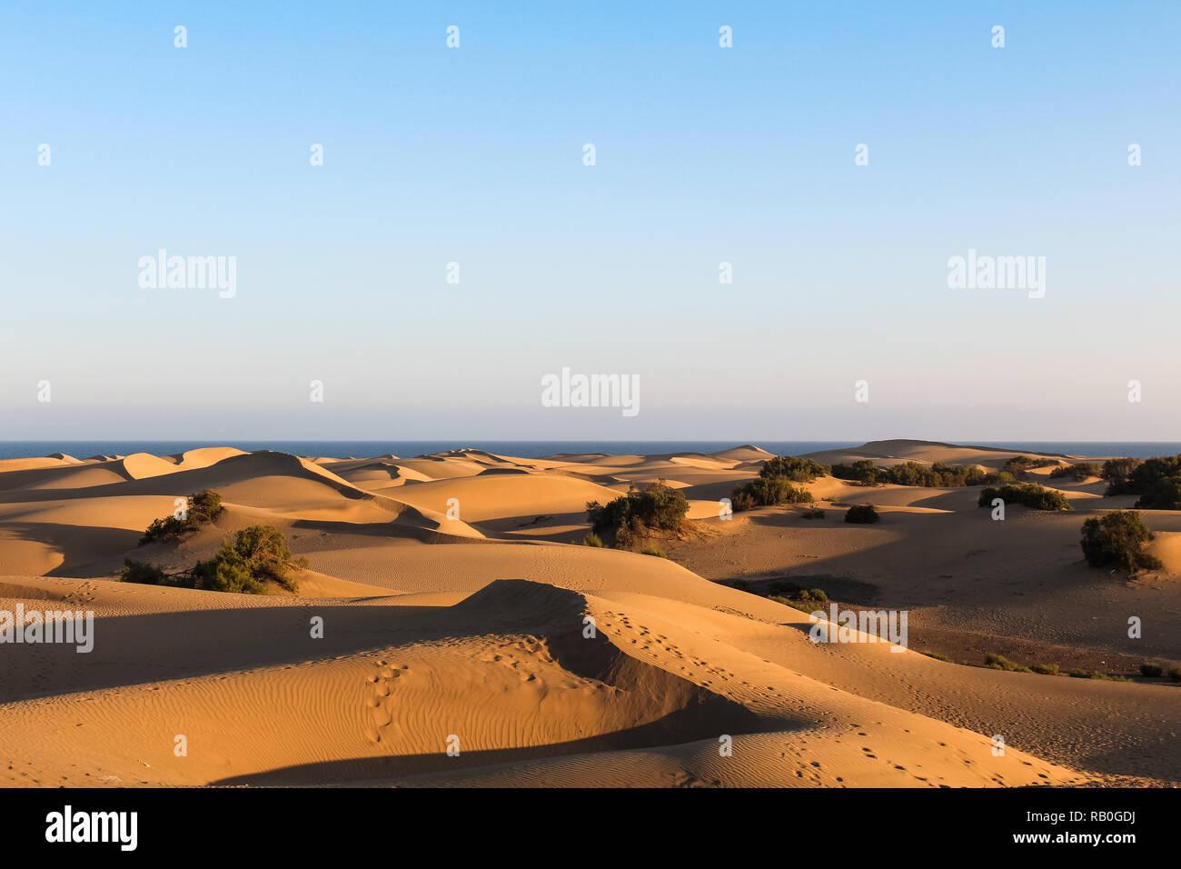 People On Sand Dunes In Maspalomas Stock Photos People On