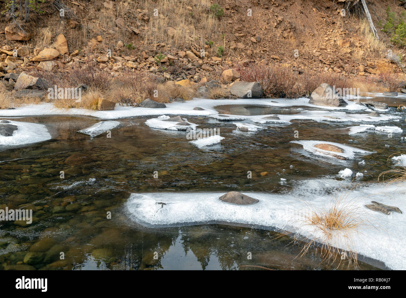 The frosty riverbank of the Little Truckee River, California, USA - Stock Image