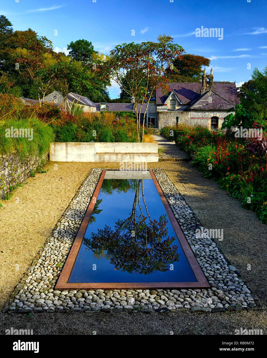 June Blake's Garden,Wicklow,Ireland,Garden,gardens,reflecting pool,pond,reflect,reflection,garden feature,design,water feature,Aralia echinocaulis,RM  - Stock Image