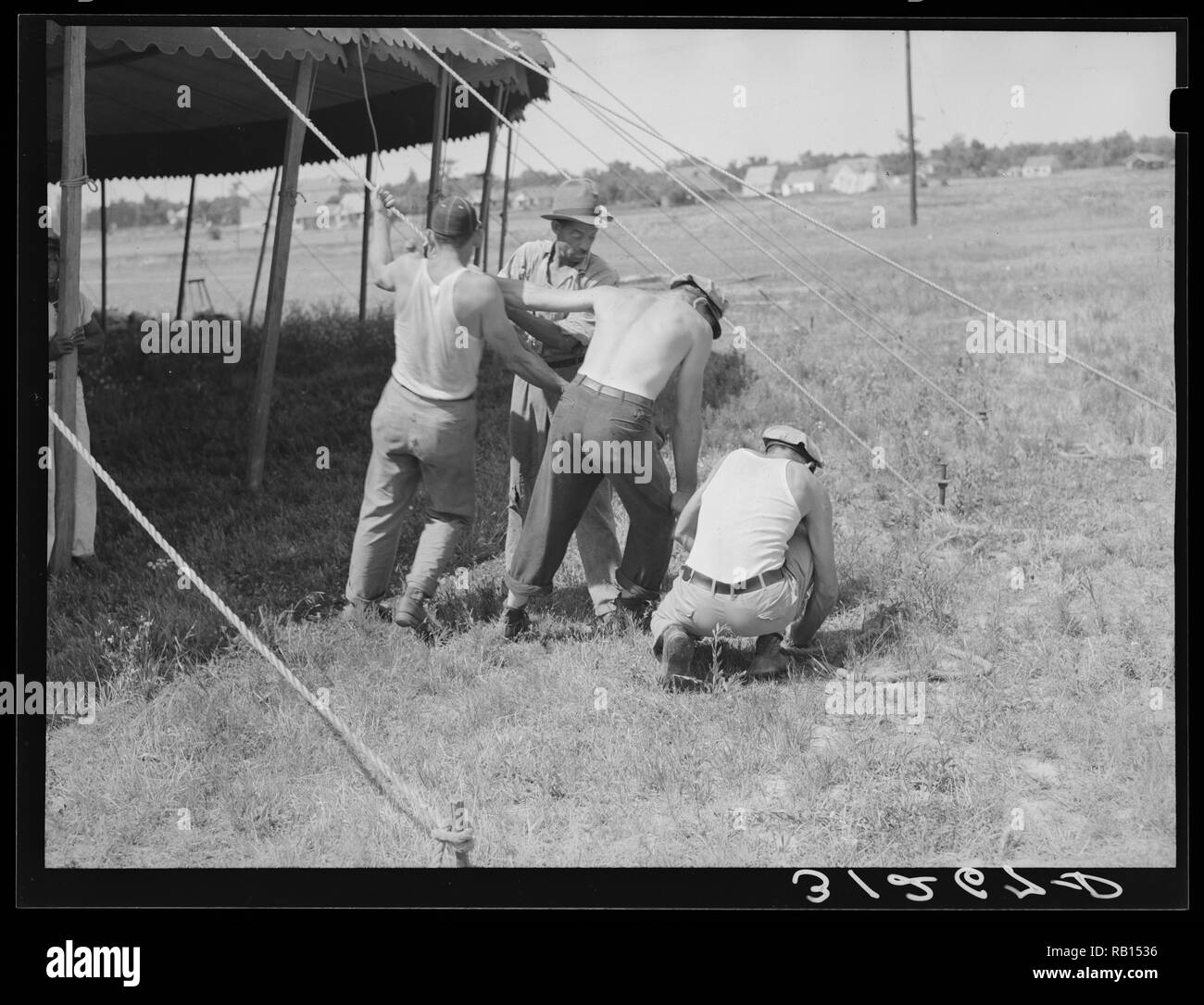 Pulling ropes for attachment to stakes, Lasses-White traveling show. Sikeston, Missouri ca 1938 by Lee, Russell, 1903-1986.jpg - RB1536 1RB1536 - Stock Image