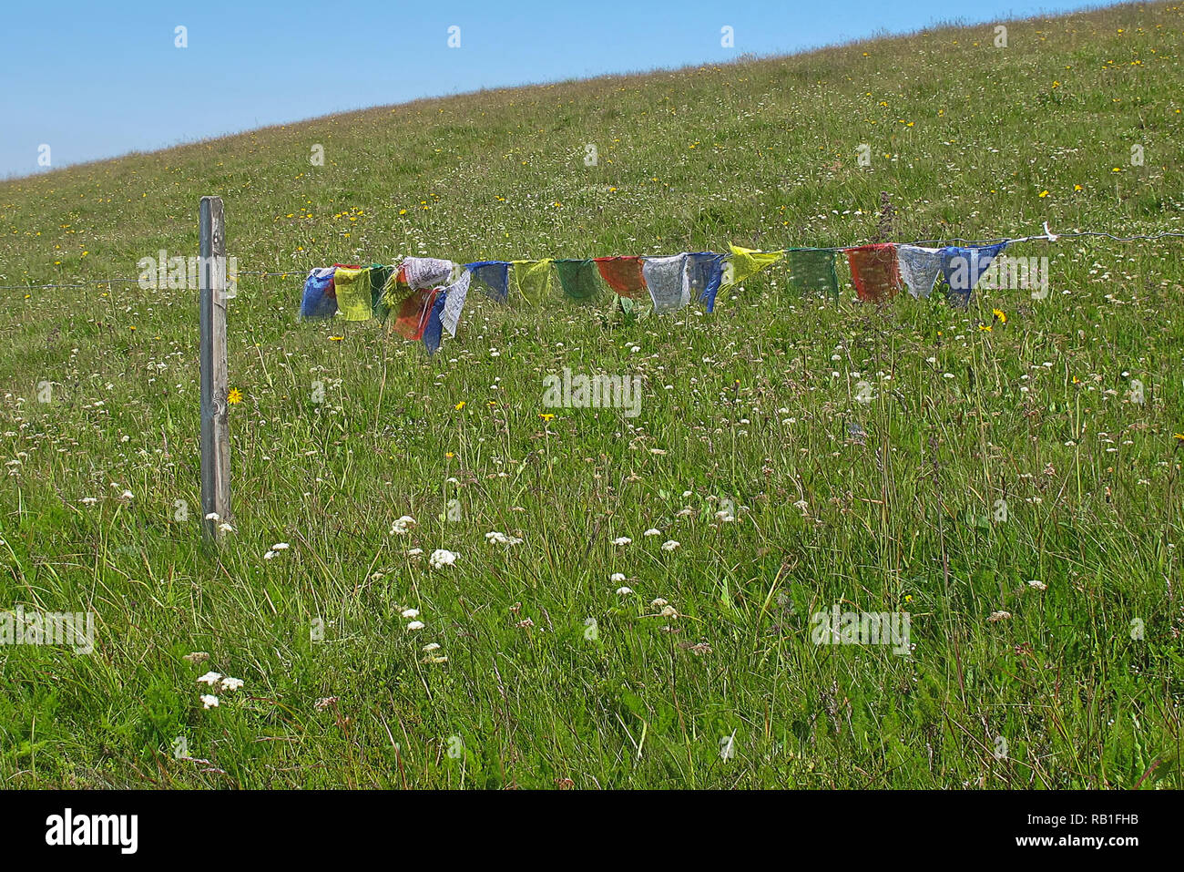 prayer flags meadow in Bavaria - Stock Image