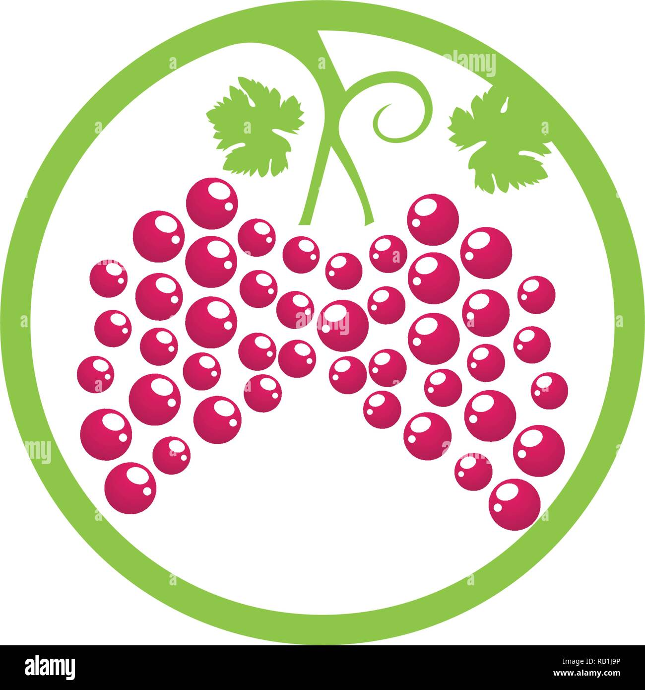grape purple and green vector illustration - Stock Vector