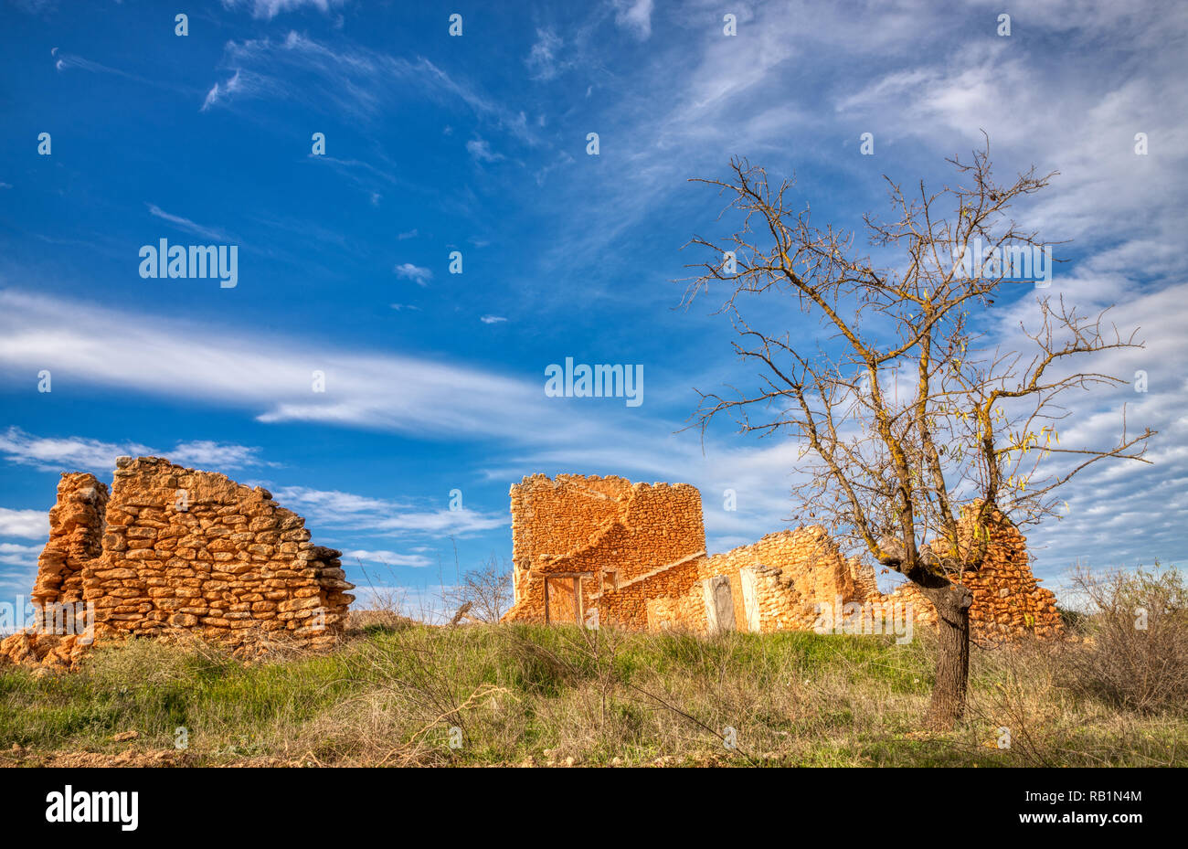 A Landscape Photo With A Single Dead Tree And The Ruins Of