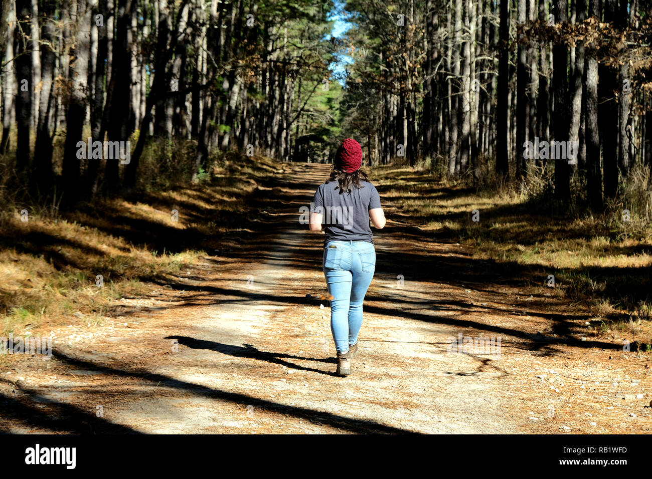Young female hiker walking alone on a service road / trail in the Sam Houston National Forest in Texas. - Stock Image