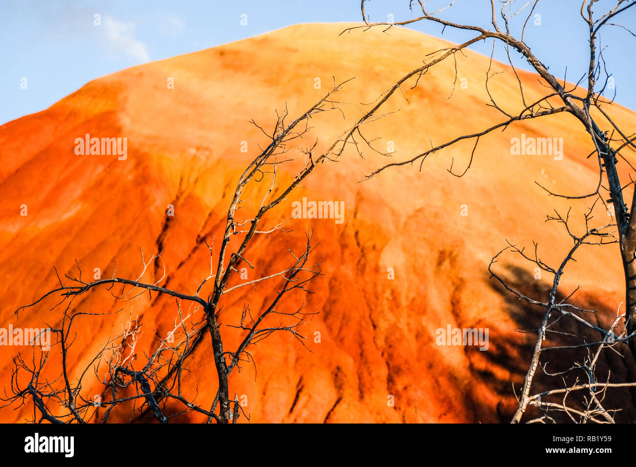 Golden and Red Red Hill at Painted Hills at John Day Fossil Stock Photo