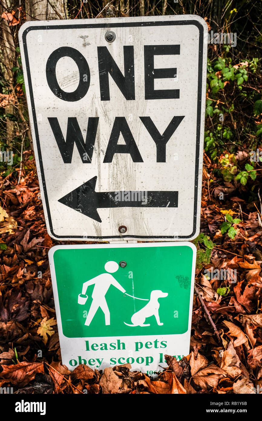 One ONE WAY sign on top of a Leash Pets Obey Scoop law sign - Stock Image