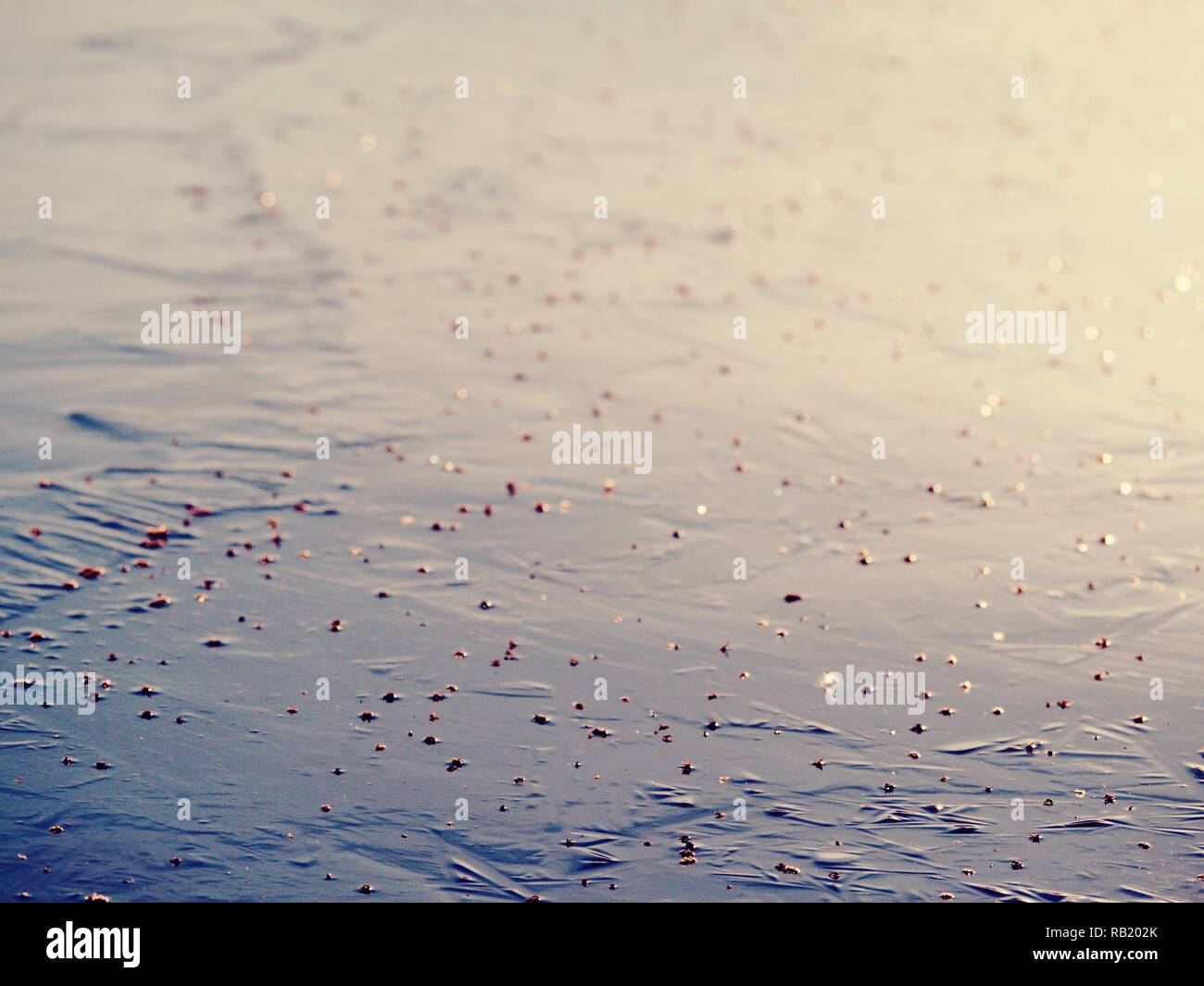 Abstract surface of frozen lake. Frozen air in arctic ice. Colorful piece of ice with sun rays reflections. Stock Photo