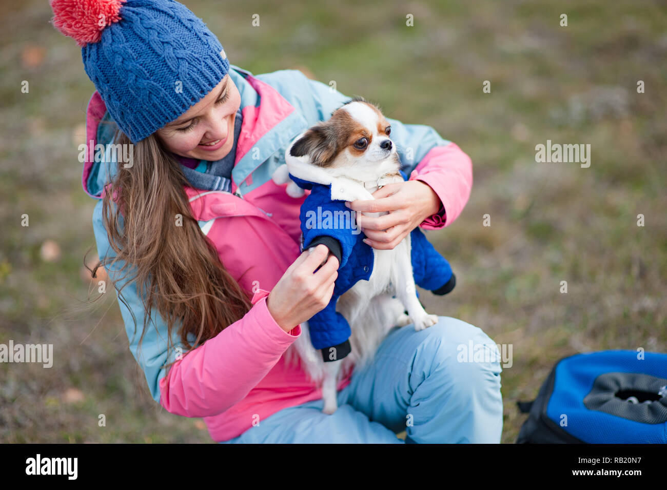 happy beautiful young woman dressing her little chihuahua dog in animal clothes - Stock Image
