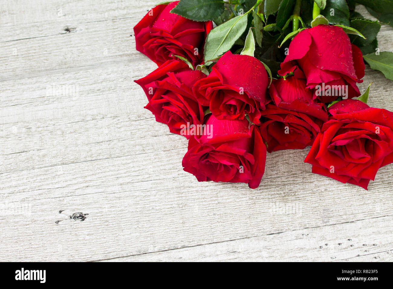 Wedding Or Valentines Day Mother Card Beautiful Blooming Red Roses On Wooden Board