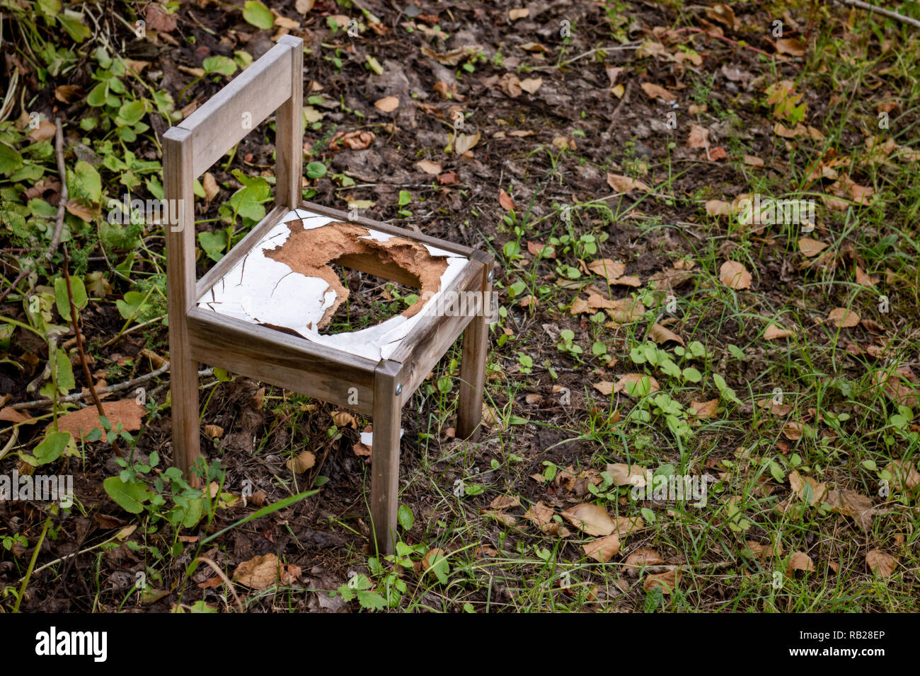 Broken and abandoned chair in the woods - Stock Image