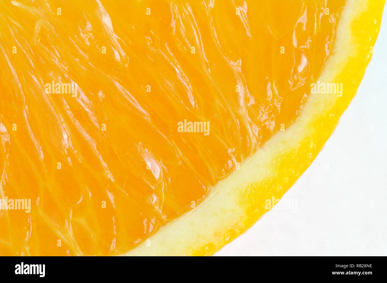 A partial cross section of a Navel orange slice (Citrus x sinensis) on white. - Stock Image
