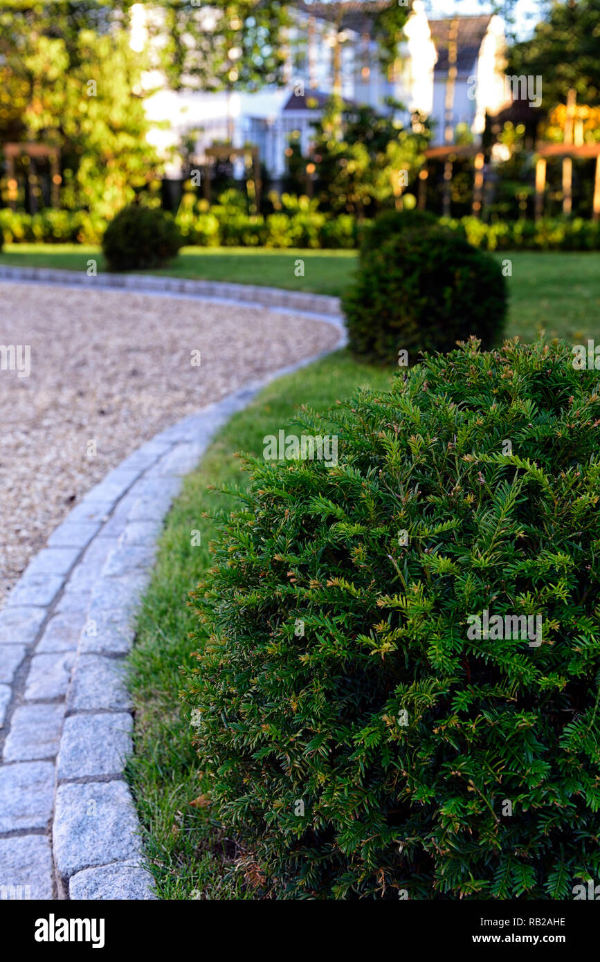 stone edging,edged,edged,lawn,laws,grass,yew ball,balls,garden design,feature,hard landscaping,serpentine,lead,leading,leads the eye,RM Floral - Stock Image