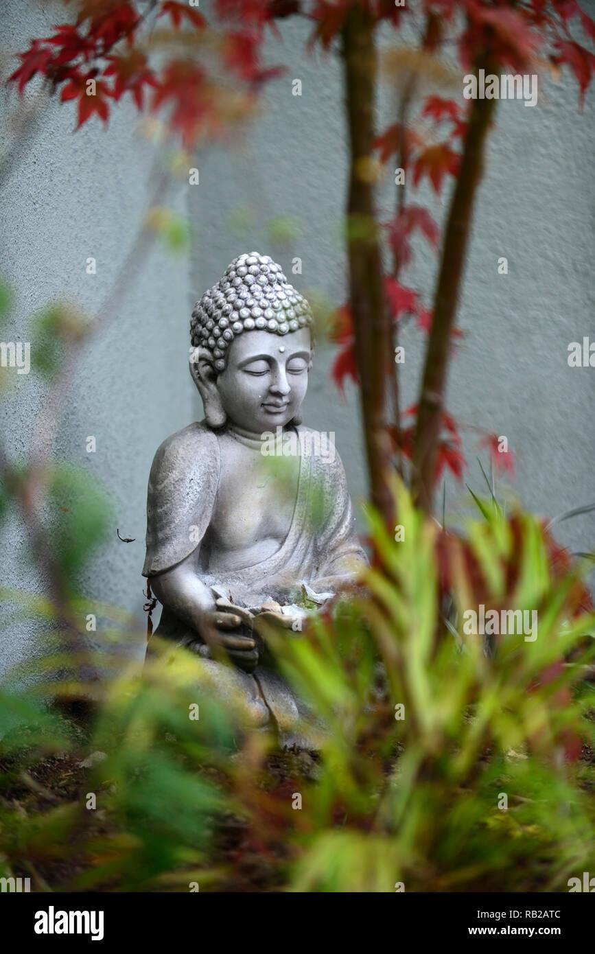 buddha statue,contemplate,contemplating,peace,peaceful,corner,garden corner,gardens,RM Floral - Stock Image