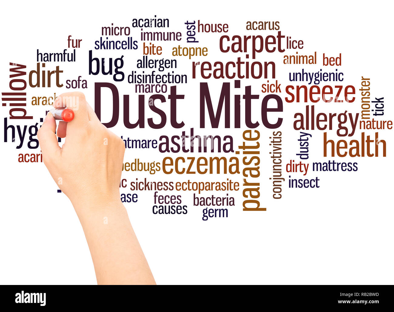 Dust mite word cloud hand writing concept on white background. - Stock Image