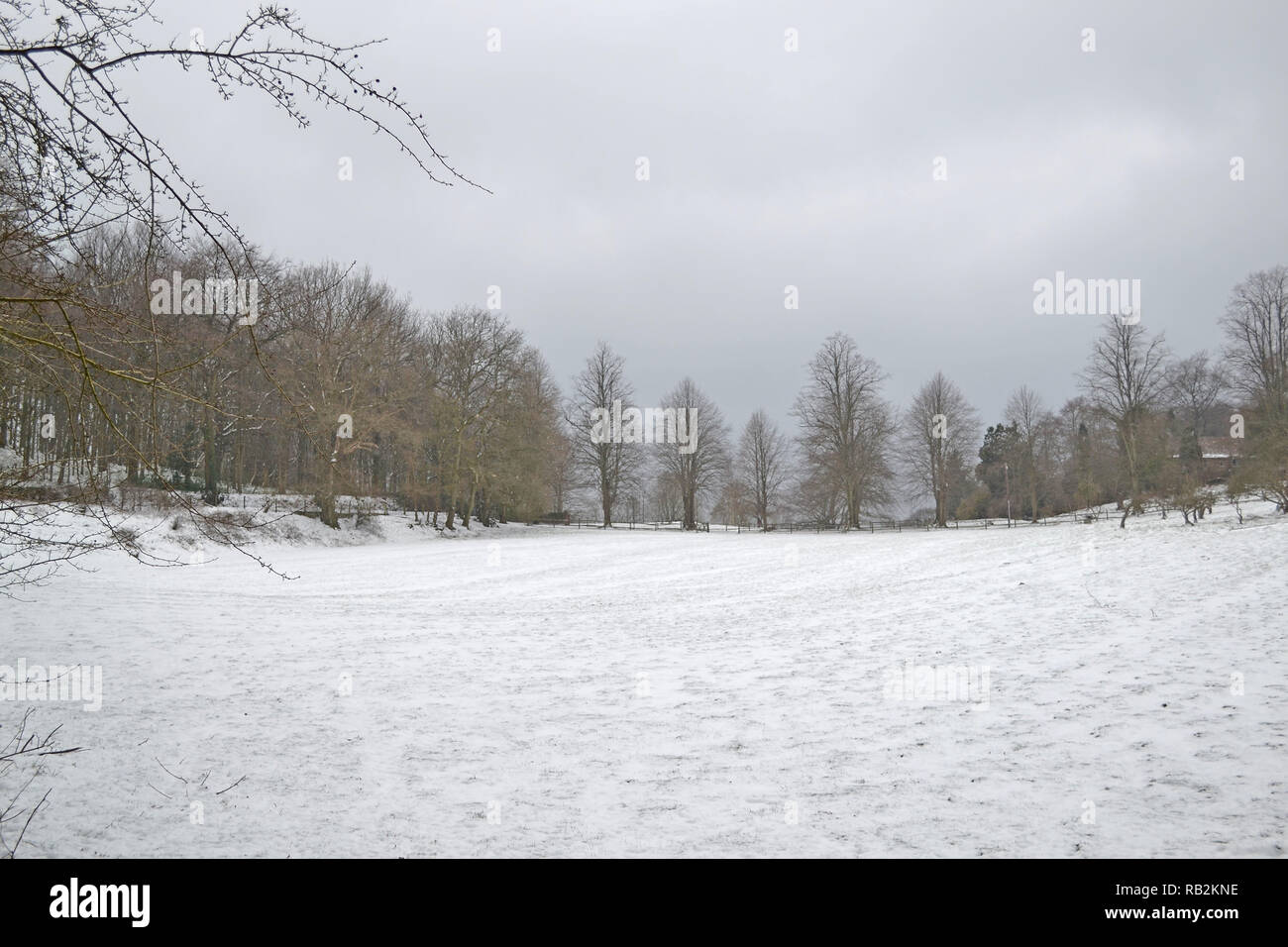 Late winter snow on a popular walk through Squerryes Park between Westerham, Hosey Common and Chartwell in Kent. March 2018 - Stock Image