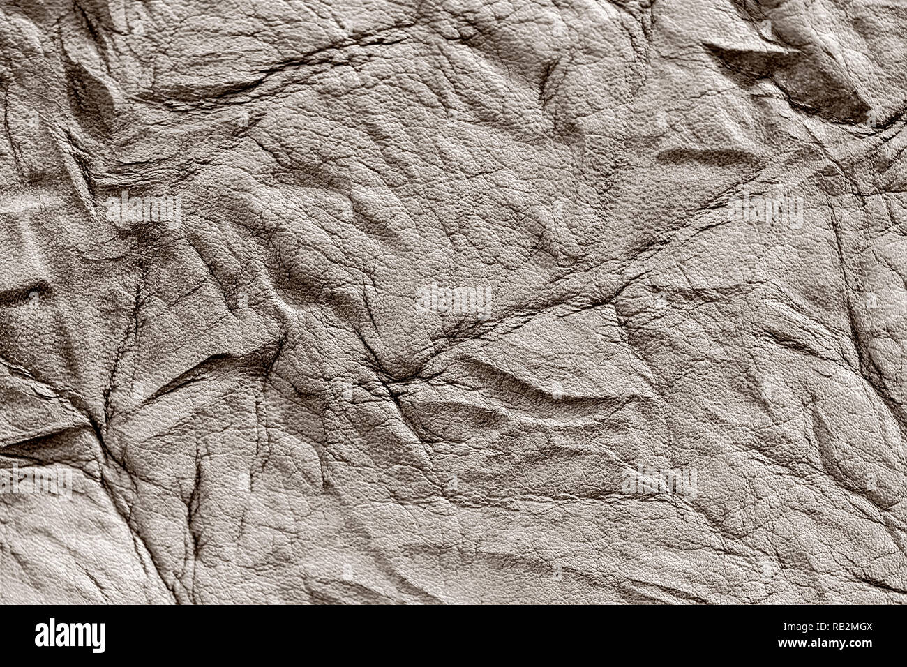 Texture of rough crumpled genuine leather close-up, with embossed wrinkles, matte surface, trendy background - Stock Image