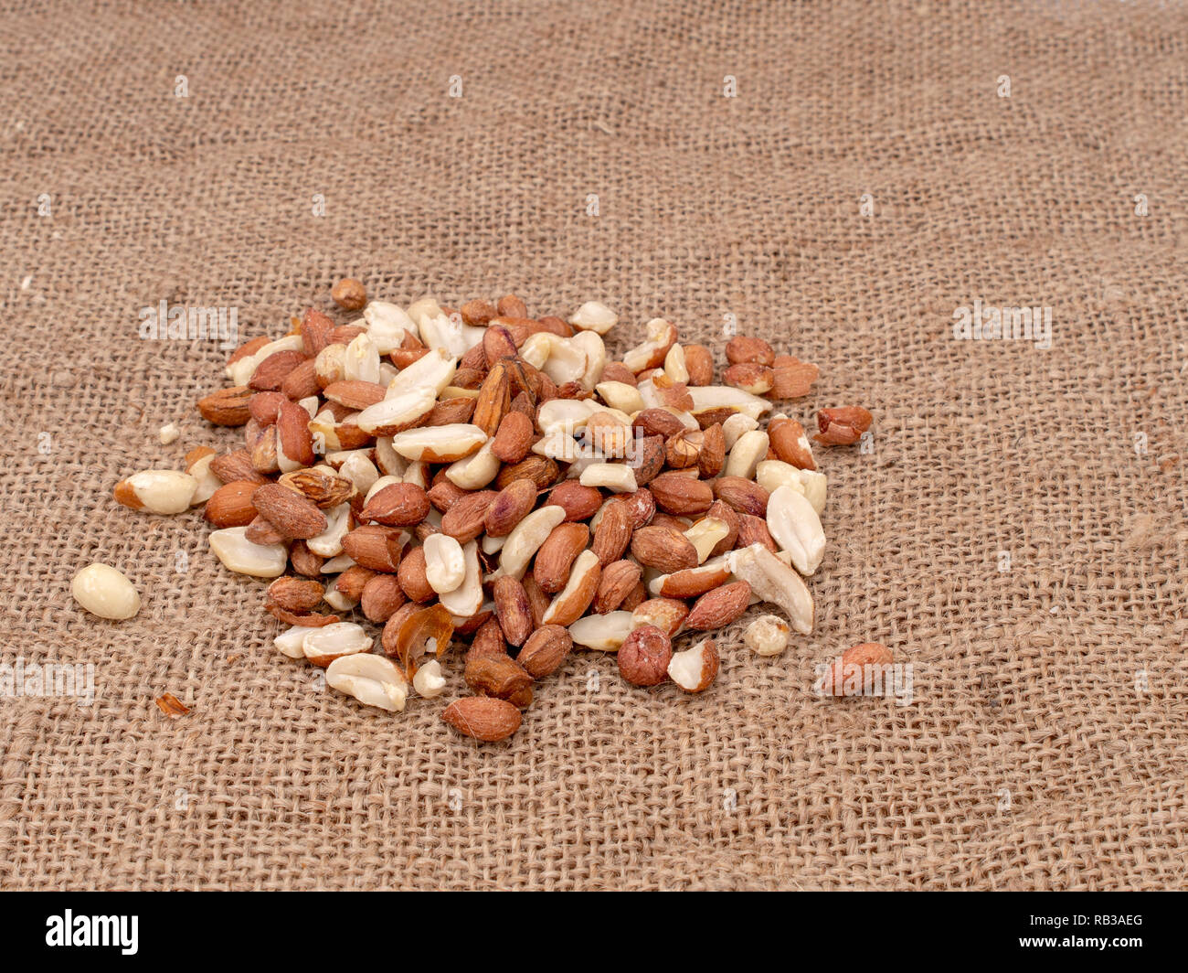 Wild bird food - unsalted peanuts, on hessian. Help feed garden birds wildlife in winter. - Stock Image