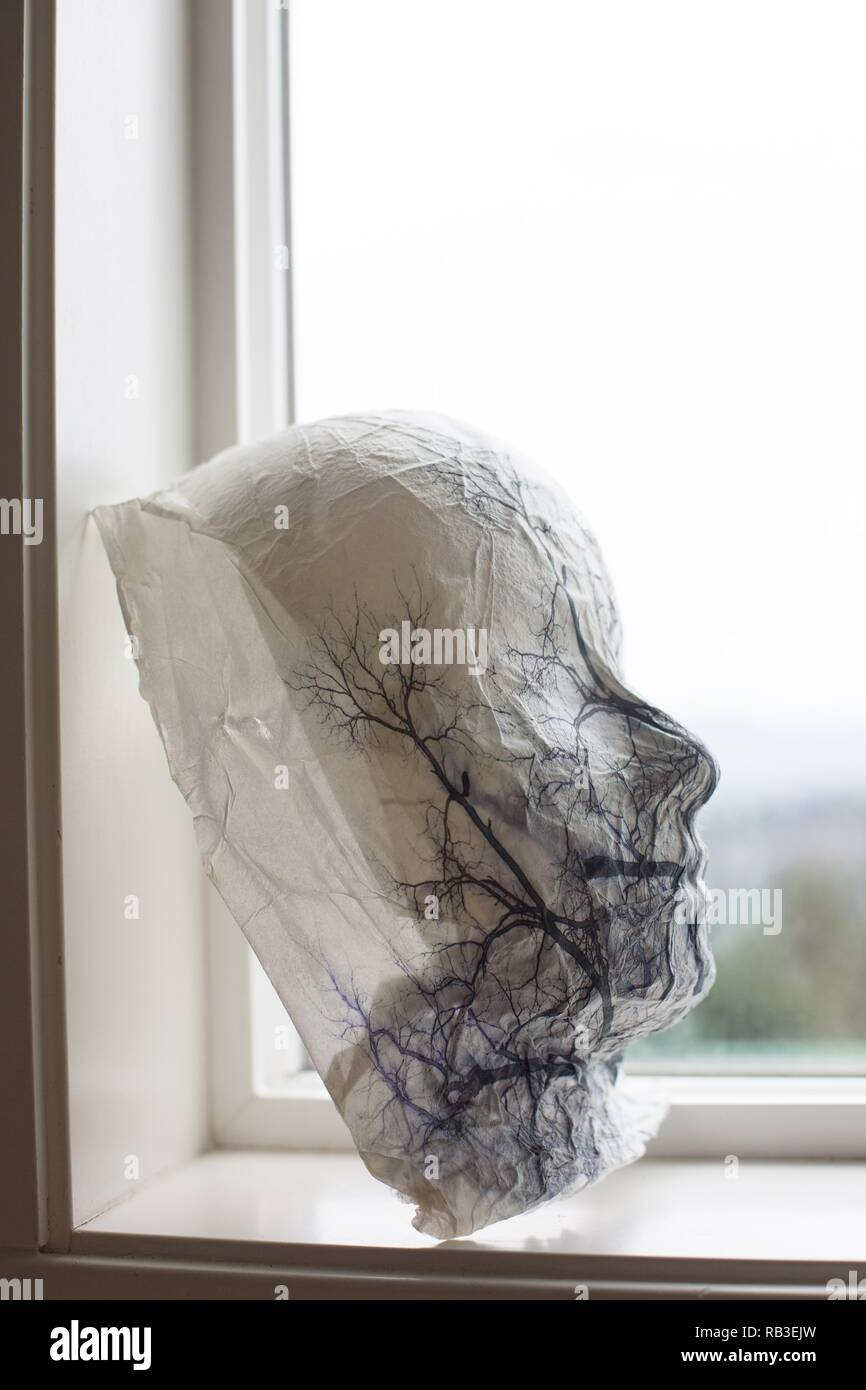 A mask with trees, in the shape of a face, in a window sill. - Stock Image