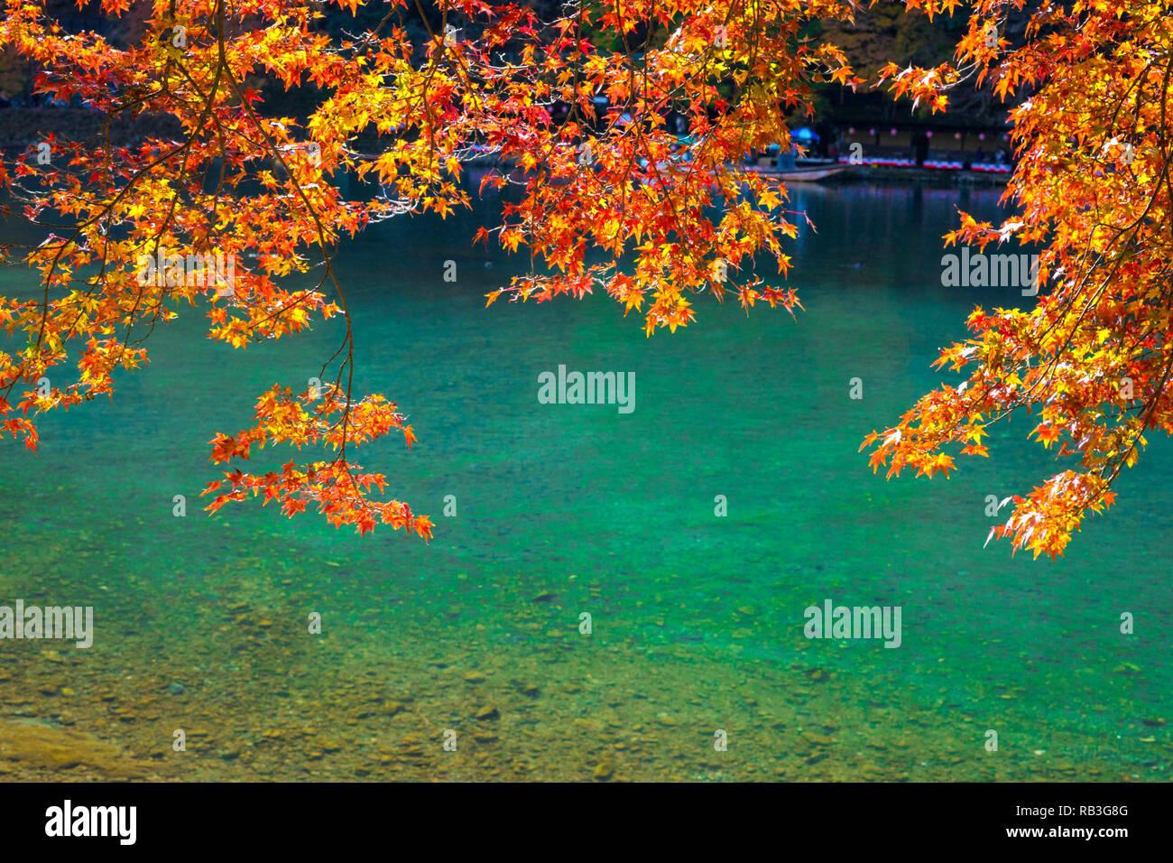 Arashiyama in Autumn season.The famous ways to explore Arashiyama is by renting a boat. - Stock Image