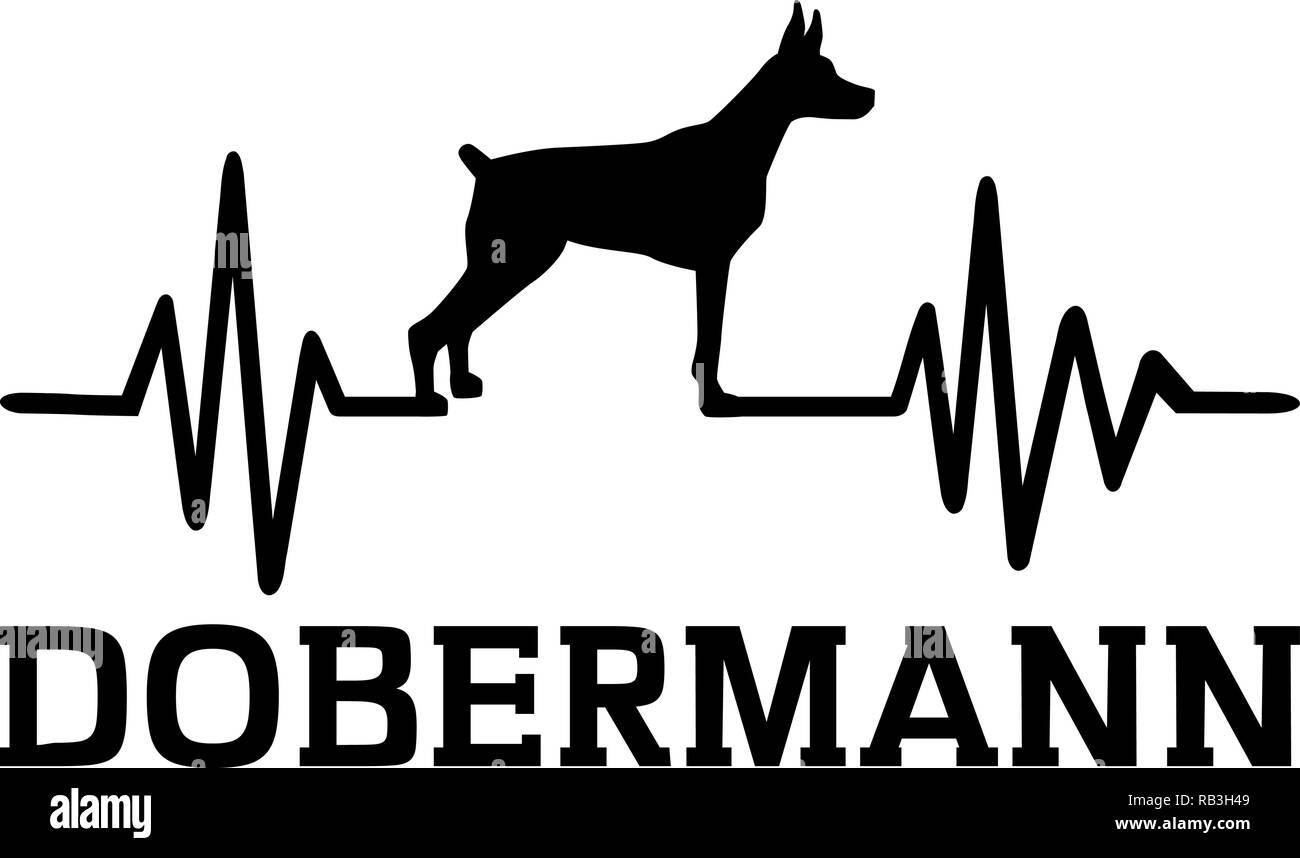 Heartbeat pulse line with Doberman dog silhouette german - Stock Vector