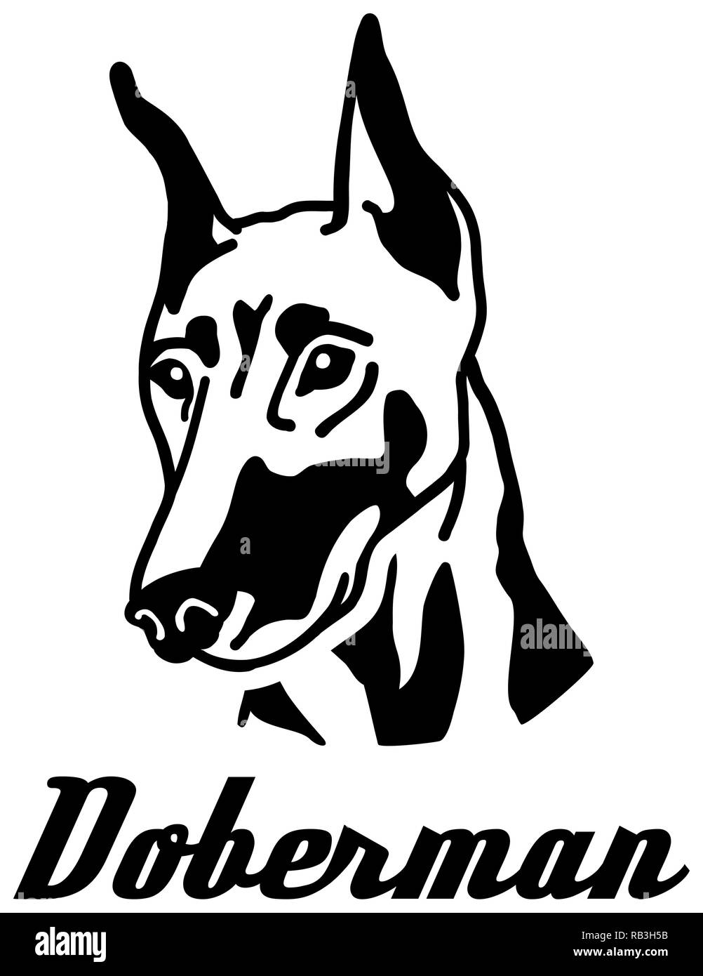 Doberman head with name black white - Stock Image