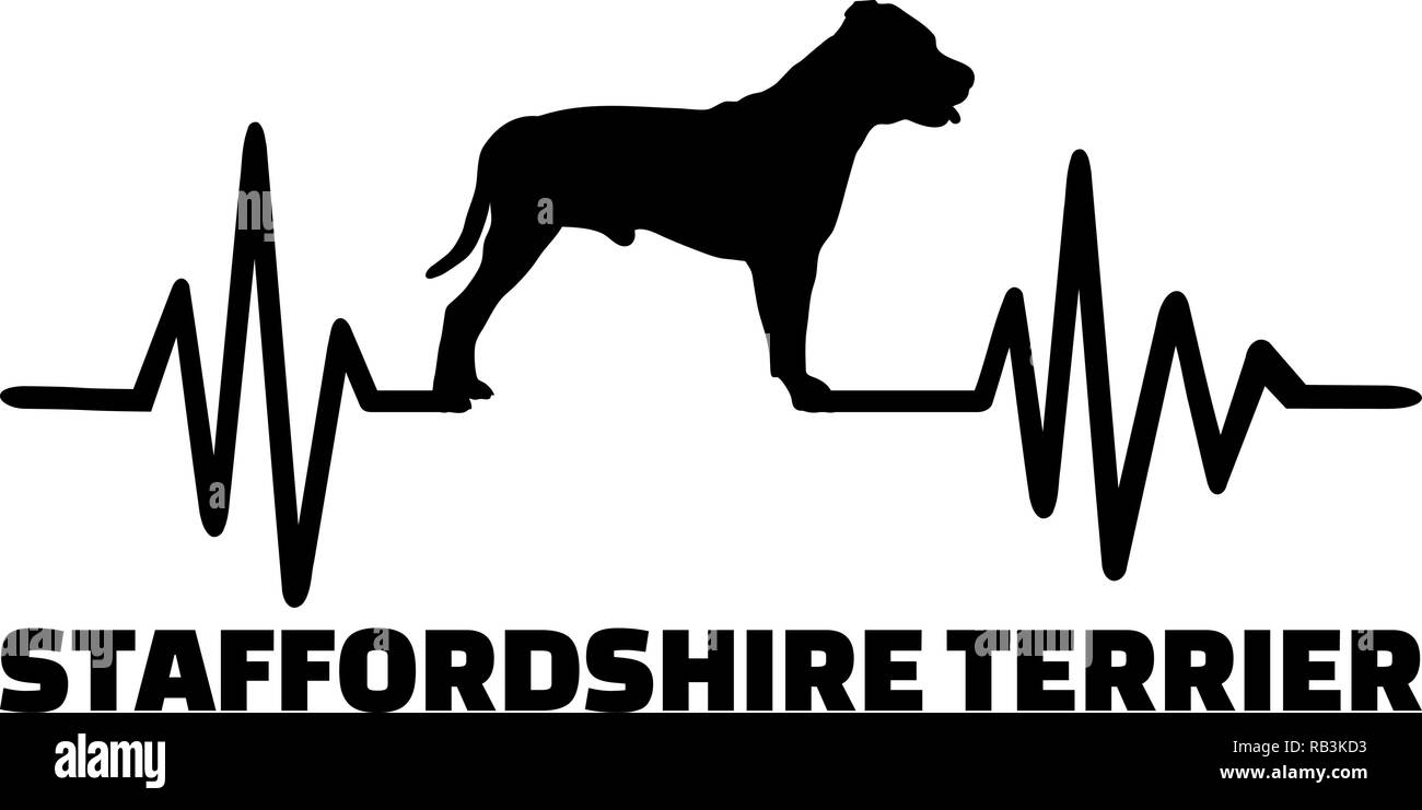 Staffordshire Bull Terrier heartbeat with silhouette - Stock Image