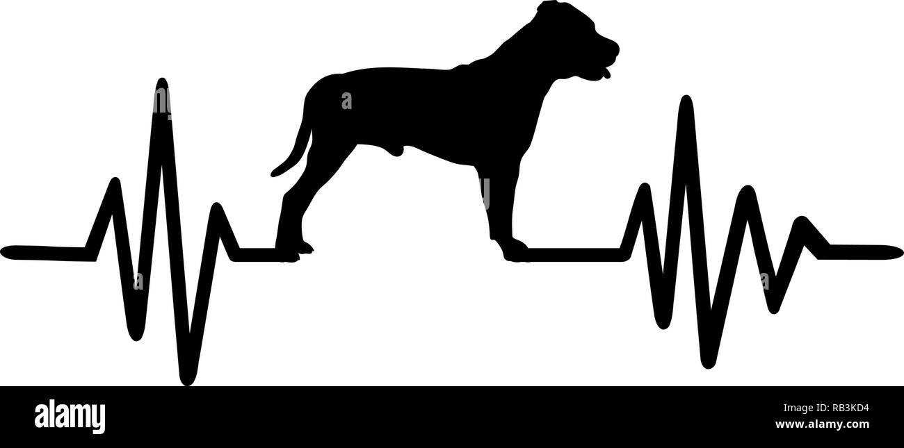 Staffordshire Bull Terrier pulse line with silhouette - Stock Image