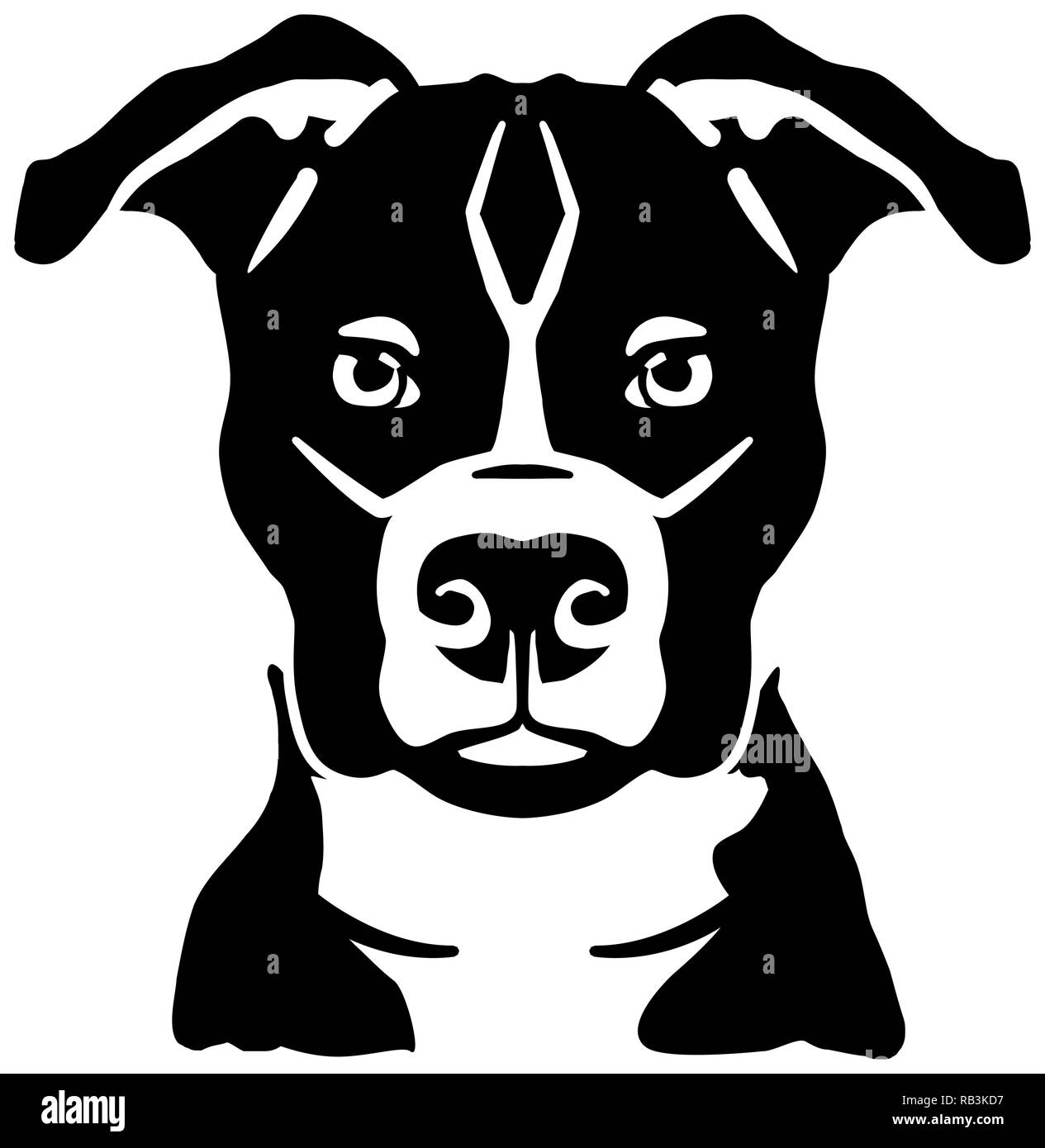 Staffordshire Bull Terrier head black and white - Stock Image