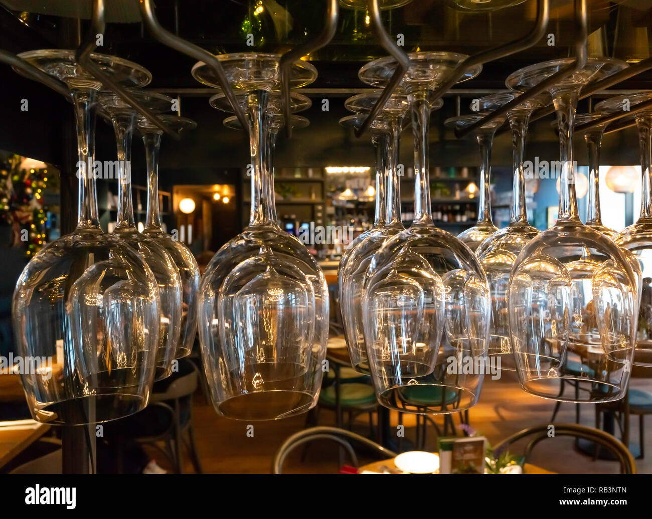 Clean polished wine glasses hanging top downwards in a bar Bistro, ready for use. - Stock Image