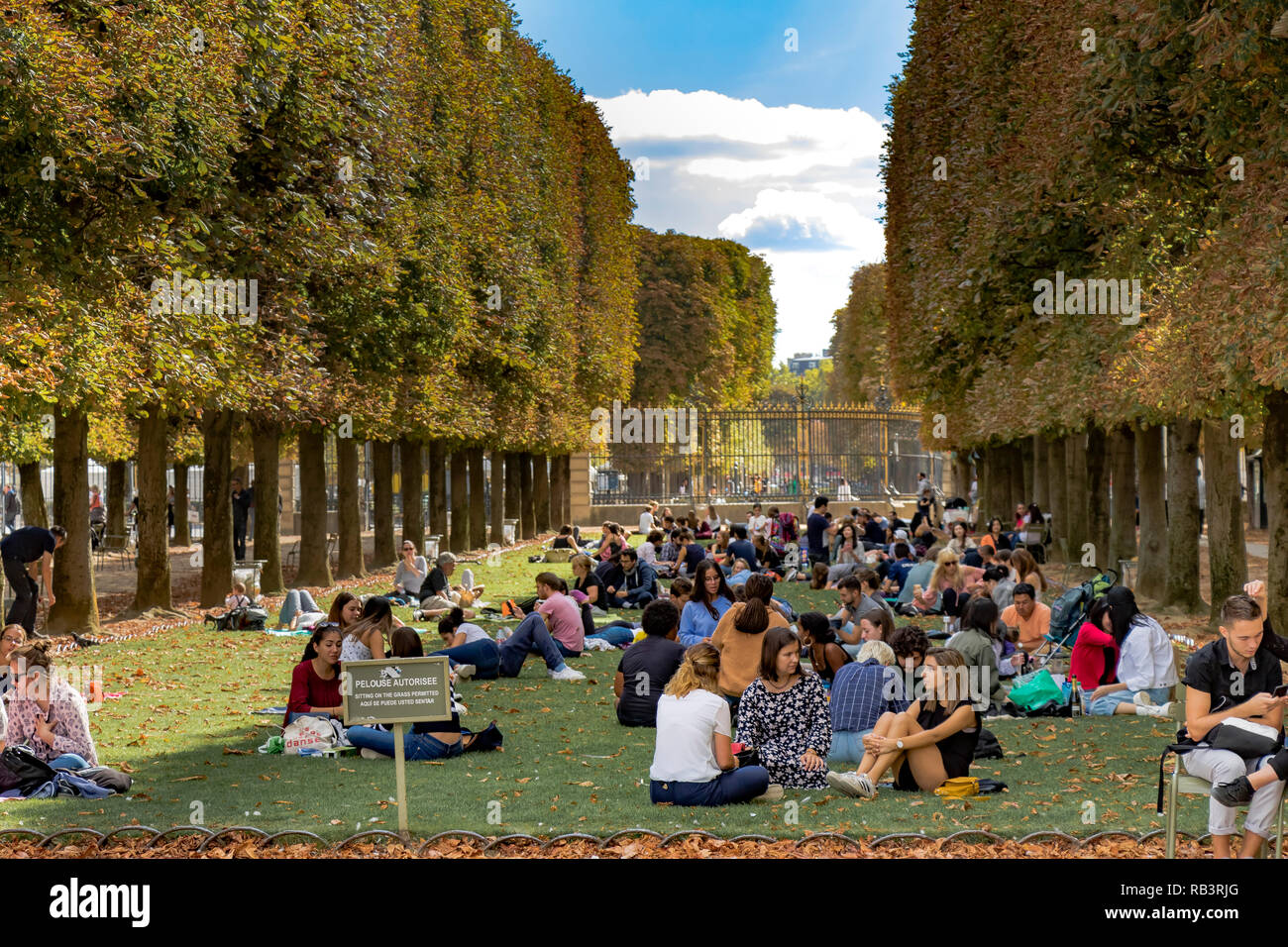 People sitting on the lawn at Jardin Du Luxembourg Gardens enjoying the summer sunshine ,Paris - Stock Image