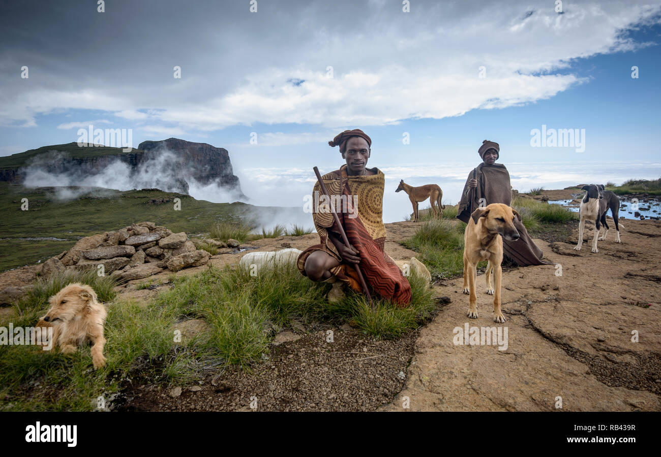 Two African men wrapped in their traditional Basotho blankets and headgear, crouched on the mountain top with their four pet dogs. Full colour image Stock Photo