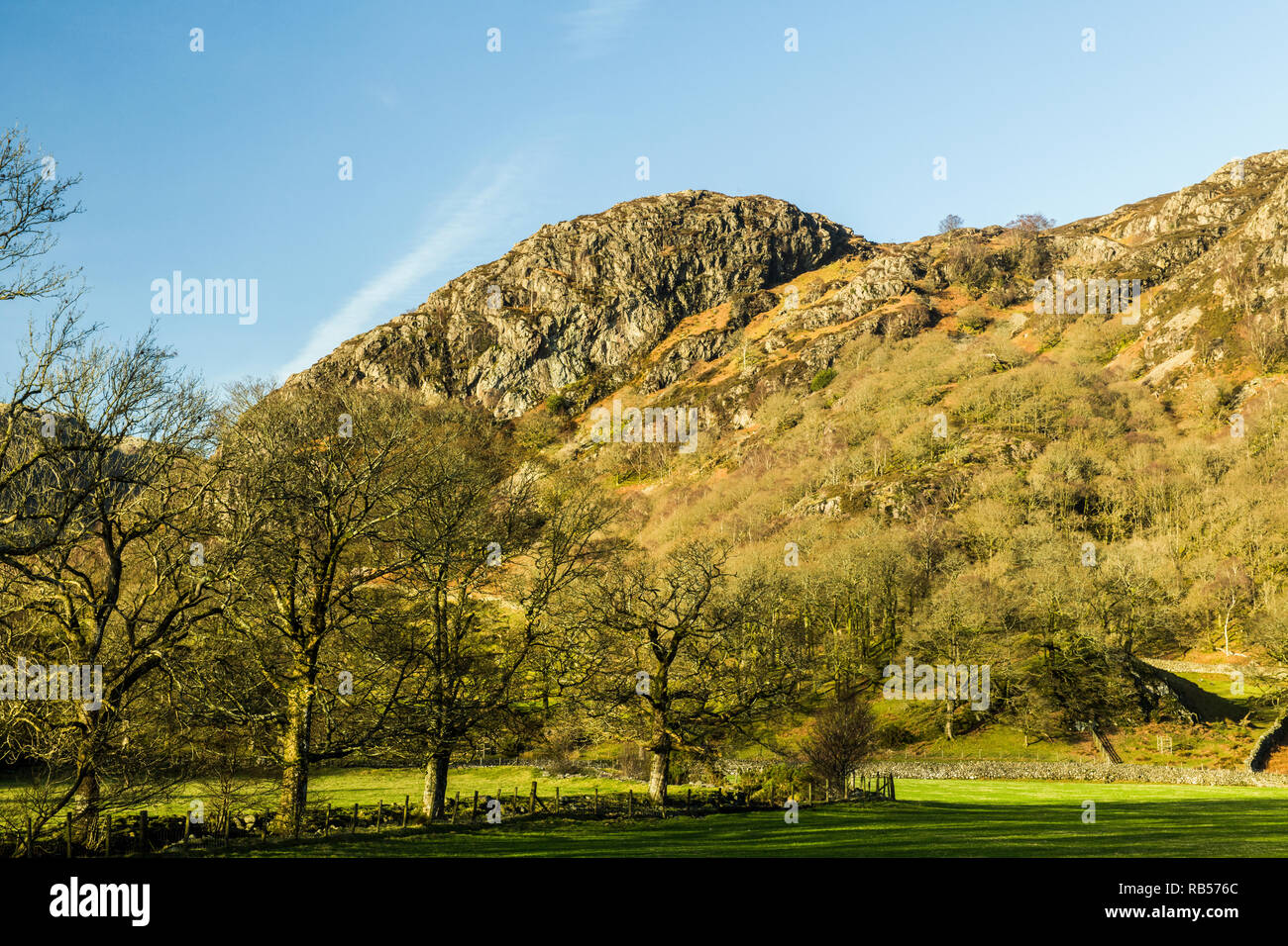 Raven Crag Yewdale Lake District National Park Cumbria - Stock Image