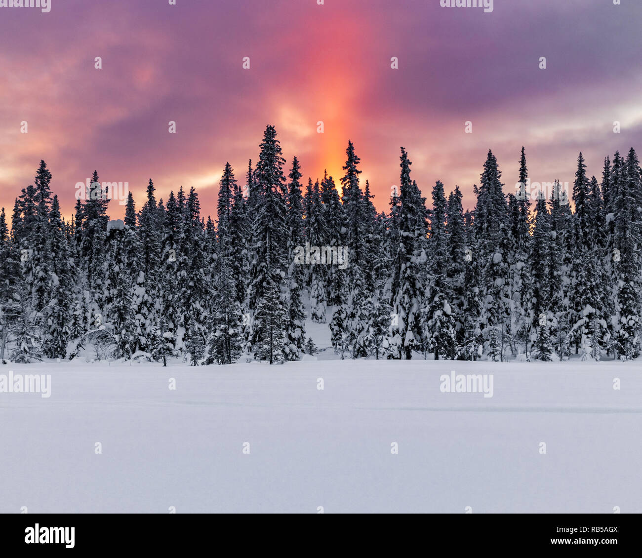 Sunrise in northern Sweden during a cold winter morning. With the first light of the year passing above the horizon creating a sunray over the trees. - Stock Image