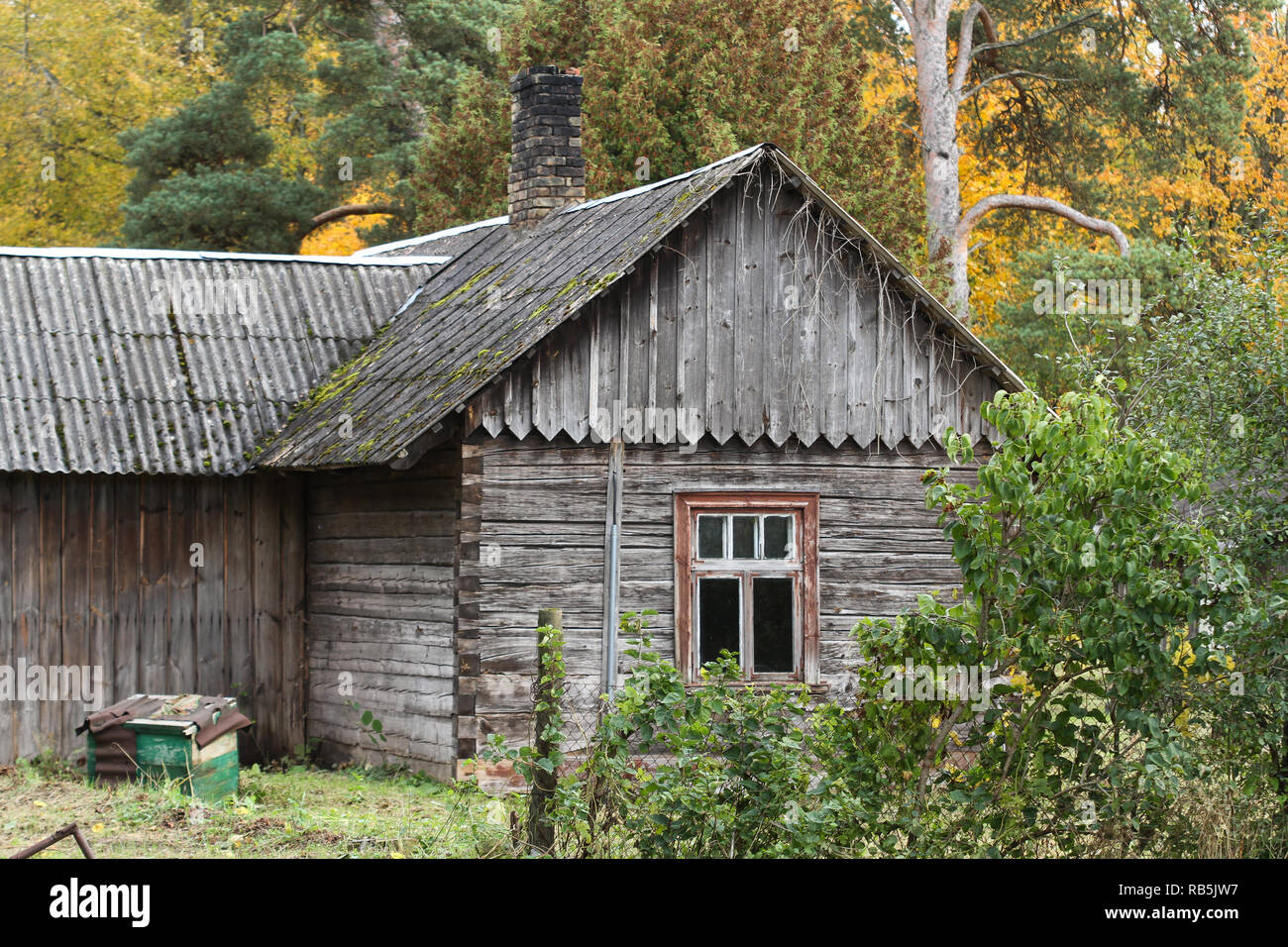 Beautiful Old Wood House In A Small Countryside Forest Stock Photo