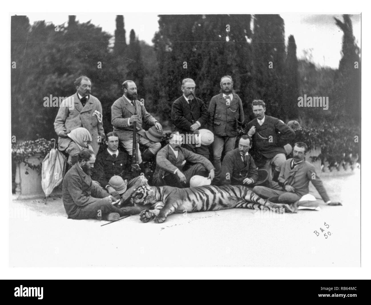 Photograph of The Prince of Wales, (Later King Edward VII of Great Britain), holding rifle, posing with members of his party and a dead tiger, during his tour of India. Dated 1875 - Stock Image