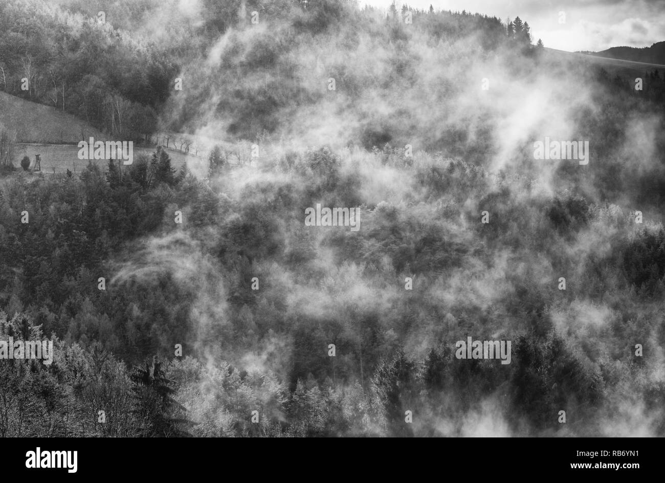 Scenic and mystical monochrome image of an idyllic Austrian rural winter landscape with rain fog,wafts of mist,clouds hills,trees,fields hunting seat - Stock Image