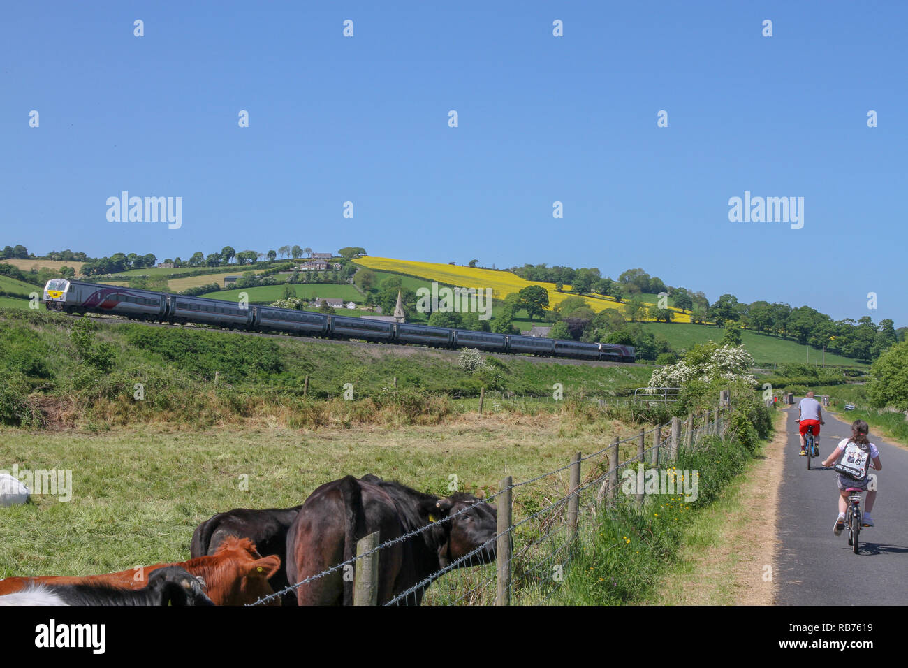 The Irish cross-border train in the County Down countryside as cyclists travel along the Newry Canal towpath near the village of Jerretspass. - Stock Image
