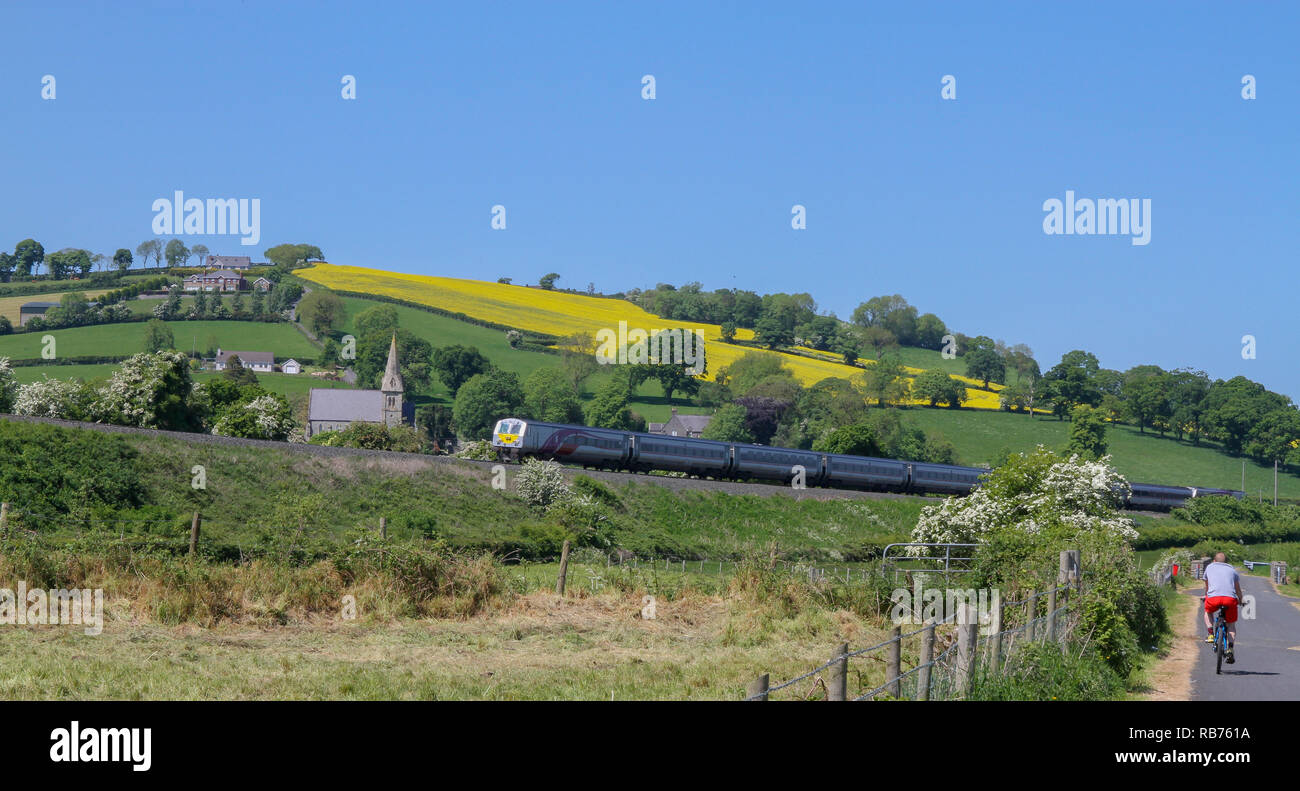 The Irish cross-border train in the County Down countryside as cyclists travel along the Newry Canal towpath near the village of Jerrettspass. - Stock Image