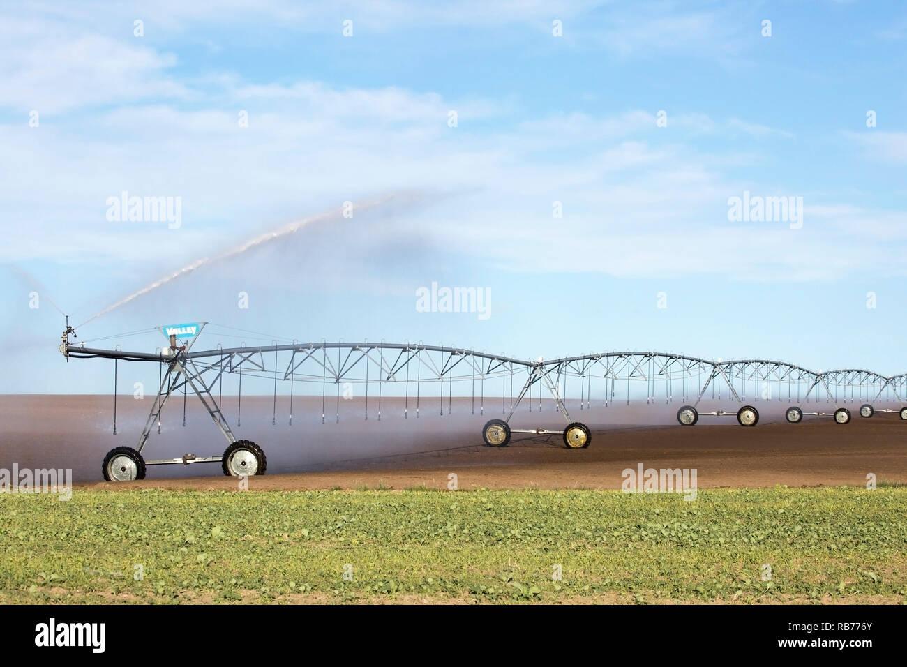 Pivot irrigation system on prairie field - Stock Image