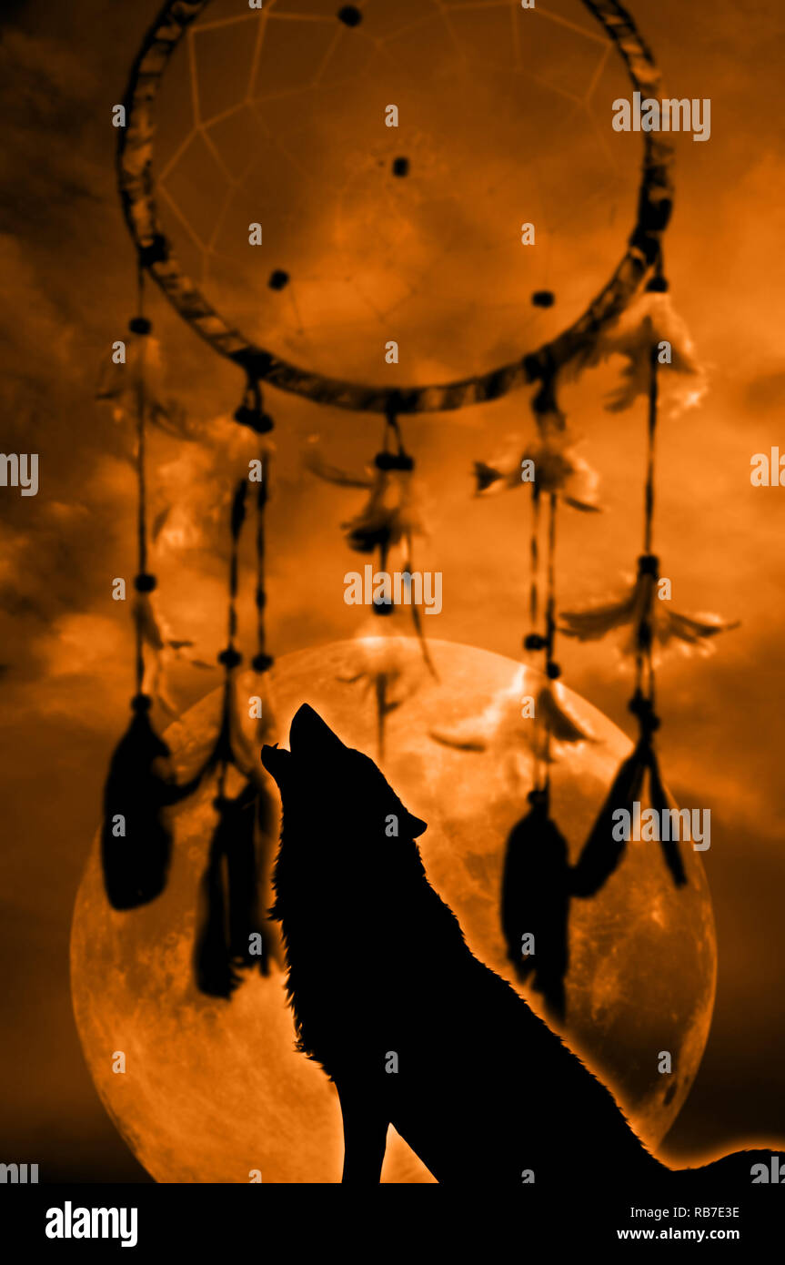 lone wolf howling to the moon with a dreamcatcher in background RB7E3E