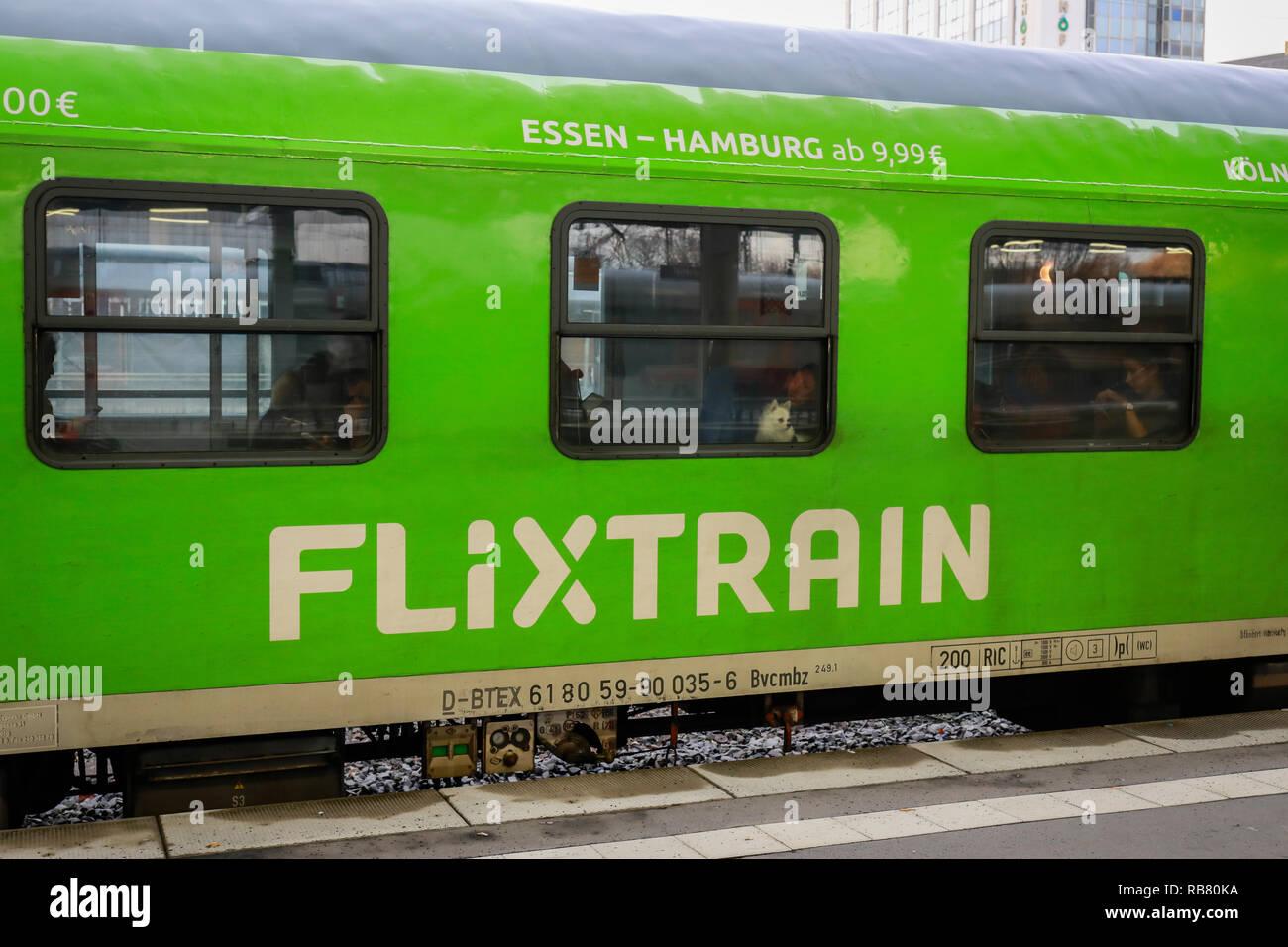 Essen, North Rhine-Westphalia, Ruhr area, Germany - Flixtrain train at Essen central station. Essen, Nordrhein-Westfalen, Ruhrgebiet, Deutschland - Fl - Stock Image