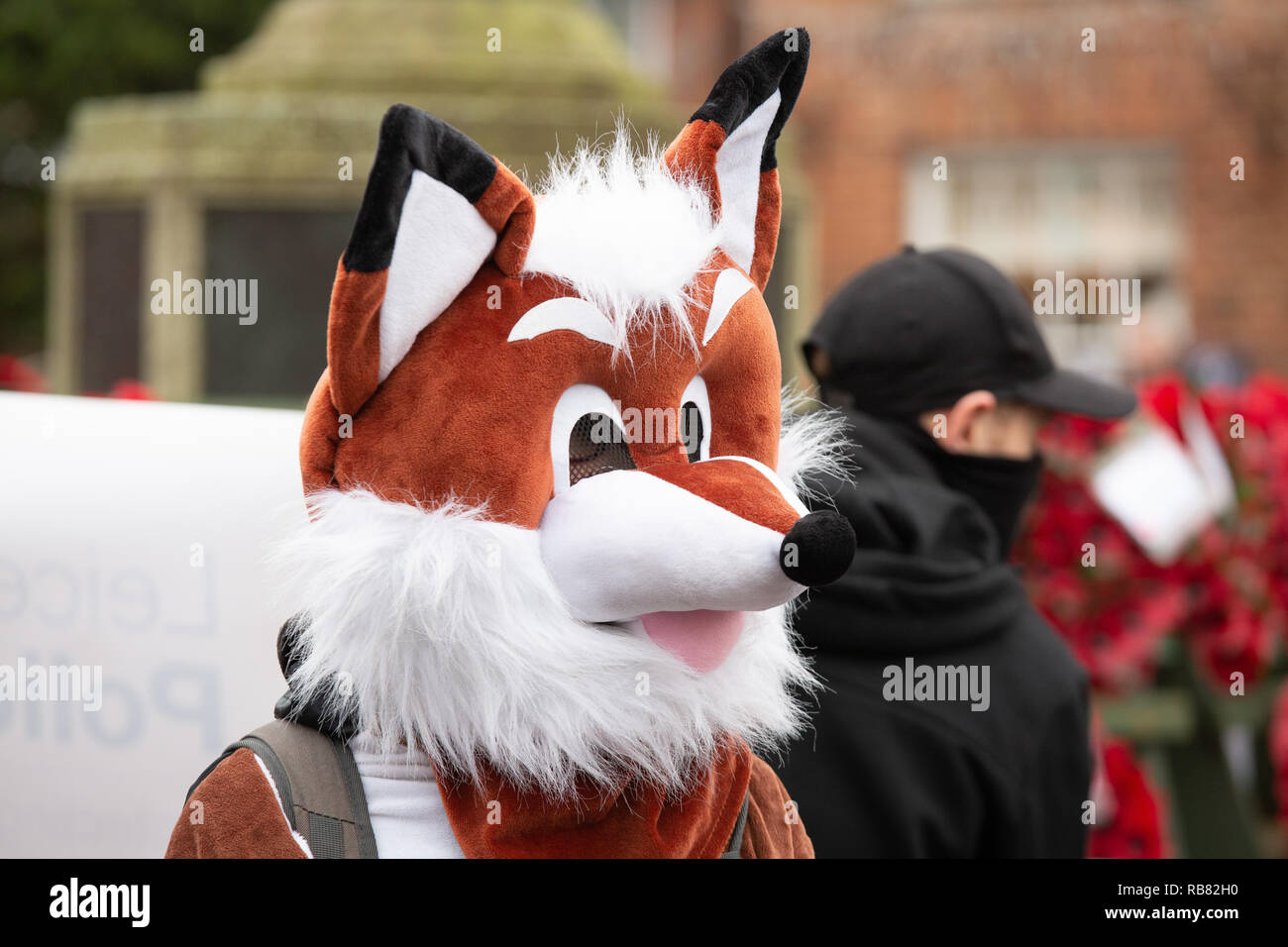 Anti Hunt protestors seen at the annual Boxing Day Hunt meet of Atherstone Hunt held in Market Bosworth - Stock Image