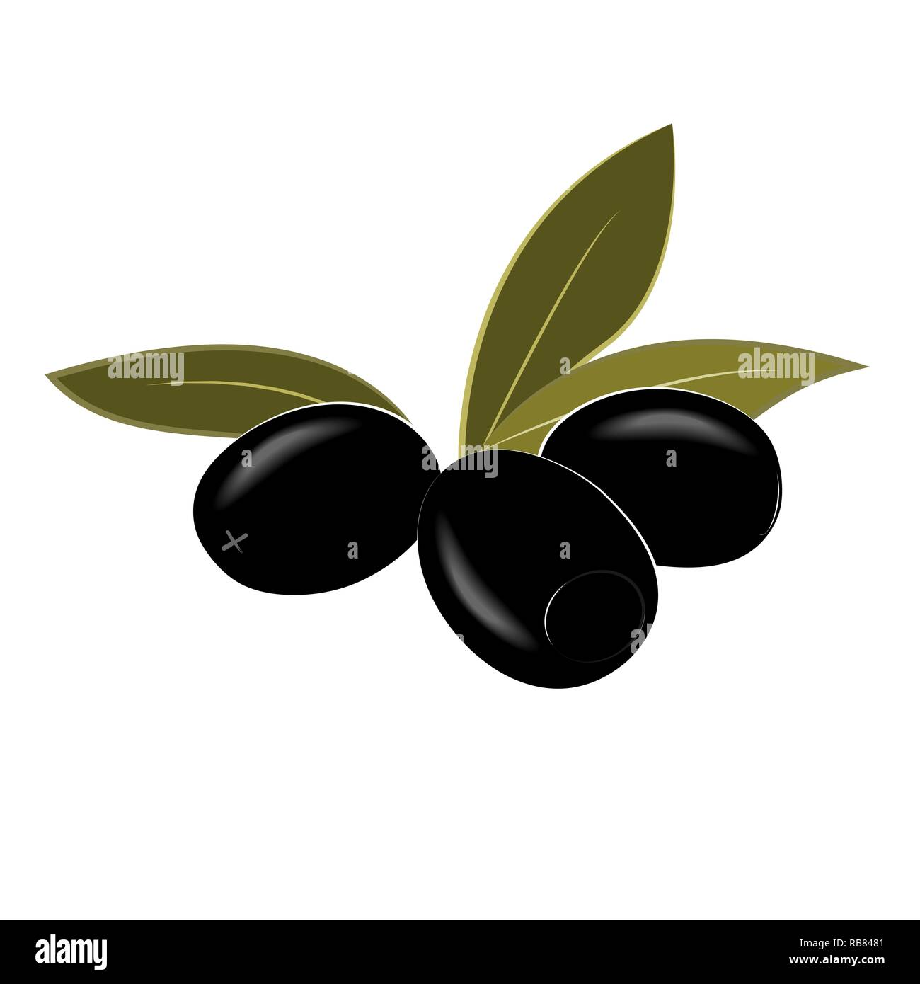 Cartoon black pitted olives isolated on white. Vector illustration. - Stock Vector
